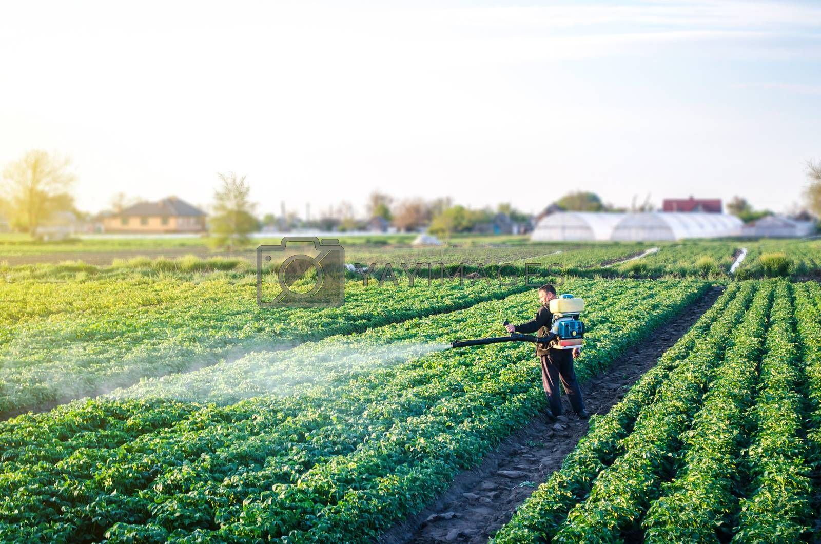 Farmer with a mist sprayer blower processes the potato plantation. Protection and care. Fumigator fogger. Environmental damage and chemical pollution. Use of industrial chemicals to protect crops.