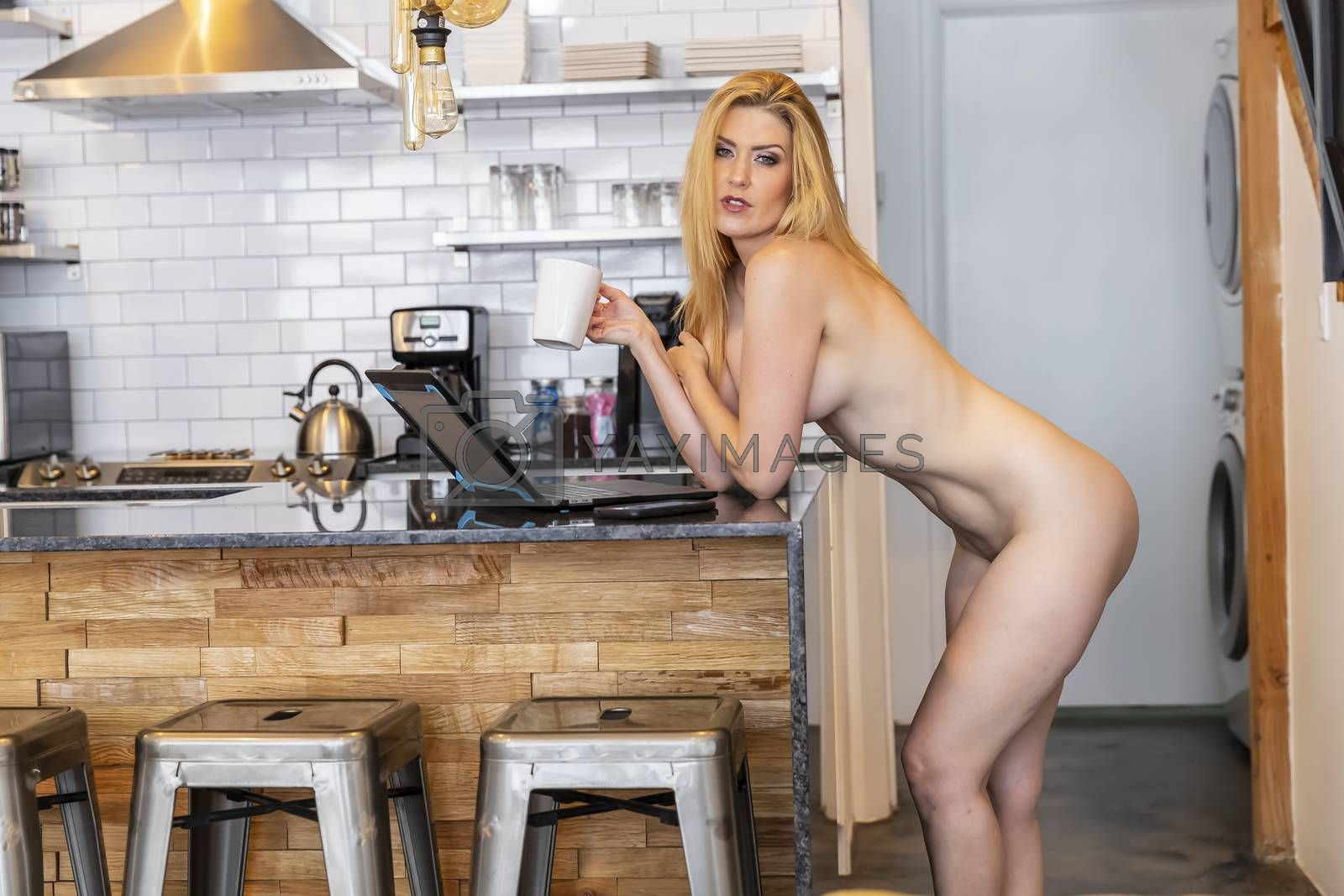 Royalty free image of Gorgeous Blonde Model Poses Nude While Working On A Computer In A Home Environment by actionsports