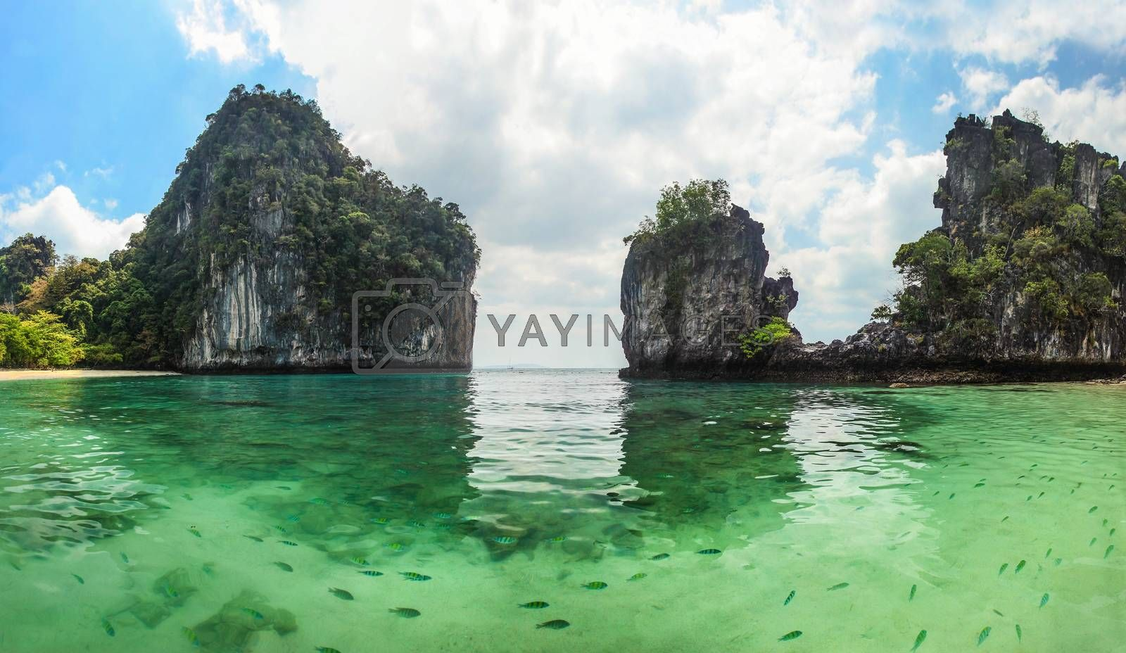 Royalty free image of Panorama of sharp karst cliffs rising from water with clear gree by Ivanko
