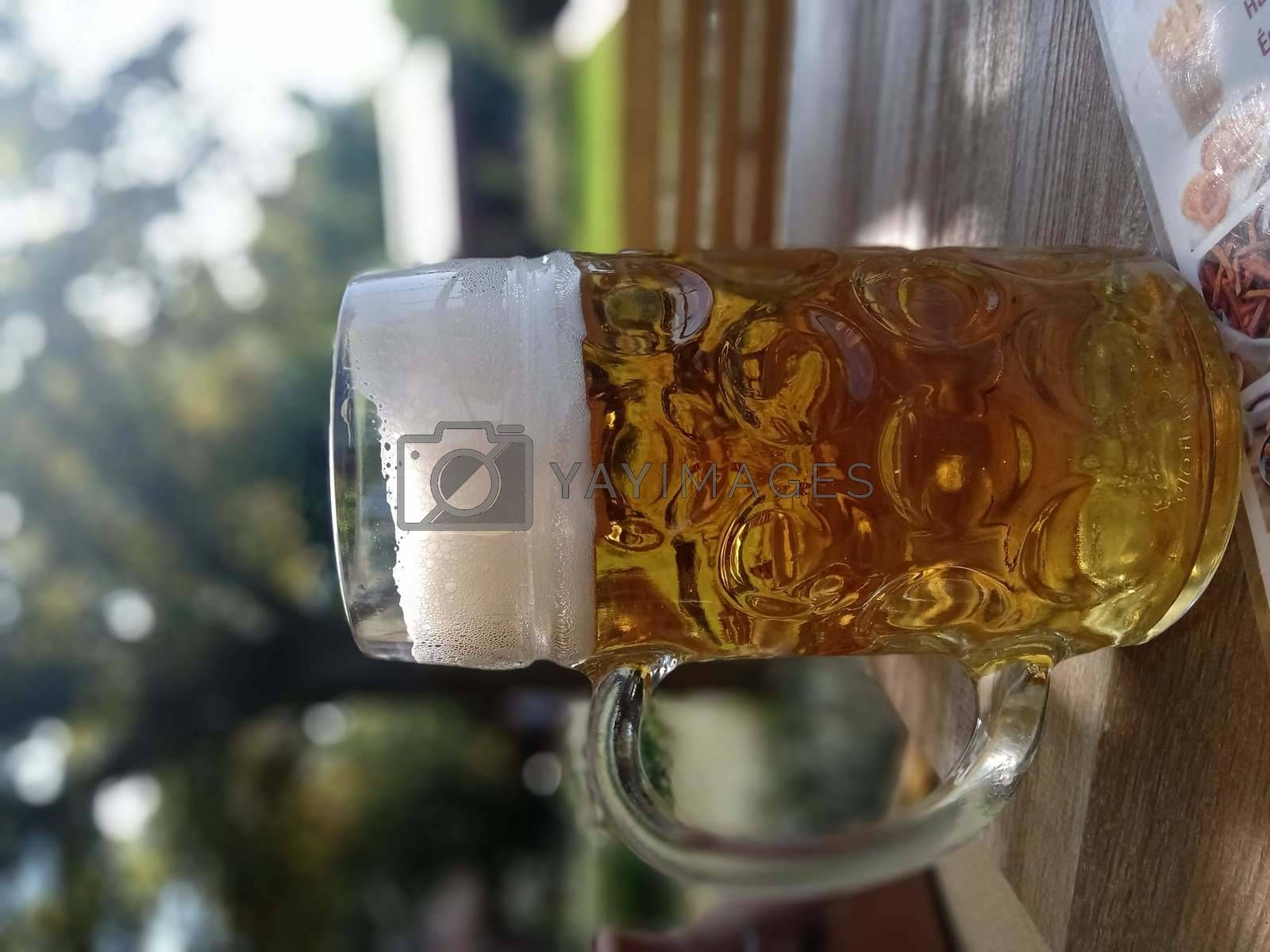 Royalty free image of A pint of beer at the Bald Dam in Budapest in the first week of September by balage941