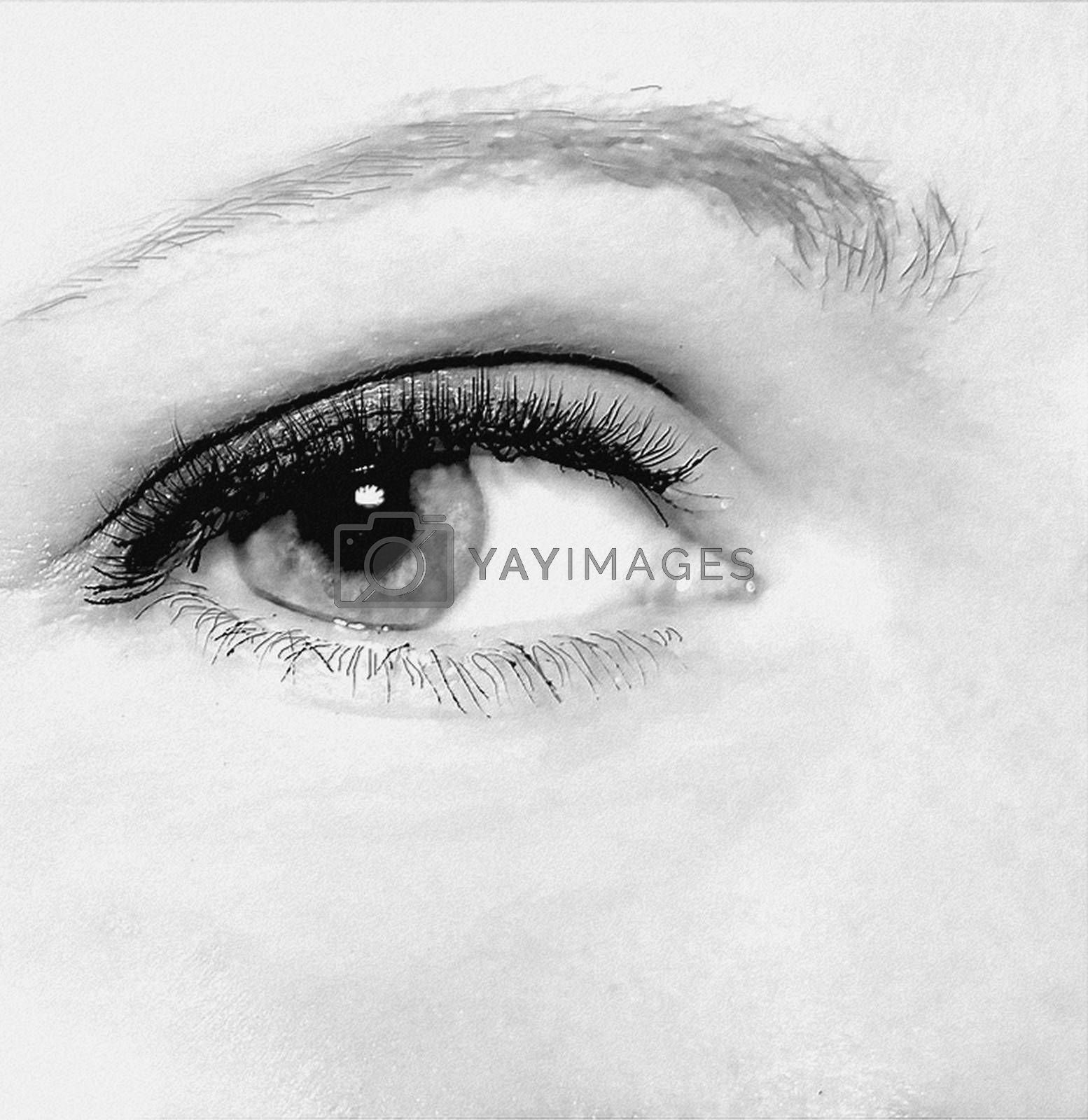 Royalty free image of Close-up of a beautiful woman's eye by balage941