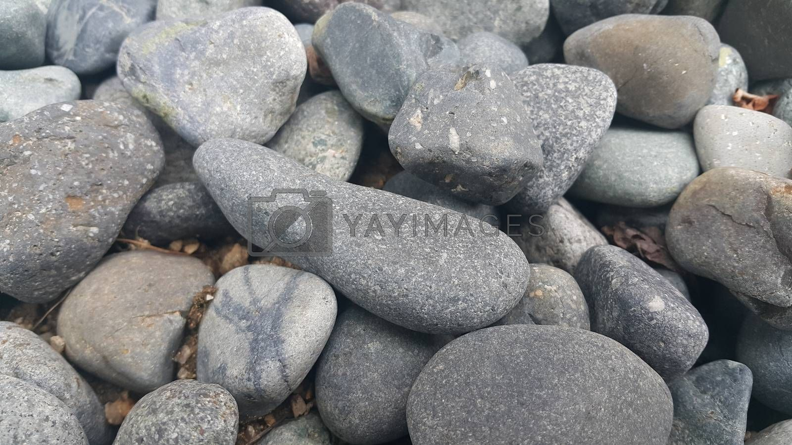Royalty free image of Rock Pebbles, small, rounded, smooth rocks. Texture background for text by Photochowk