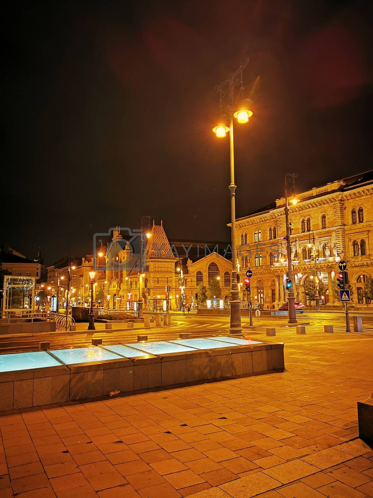 Royalty free image of Evening street view from Budapest city centre by balage941
