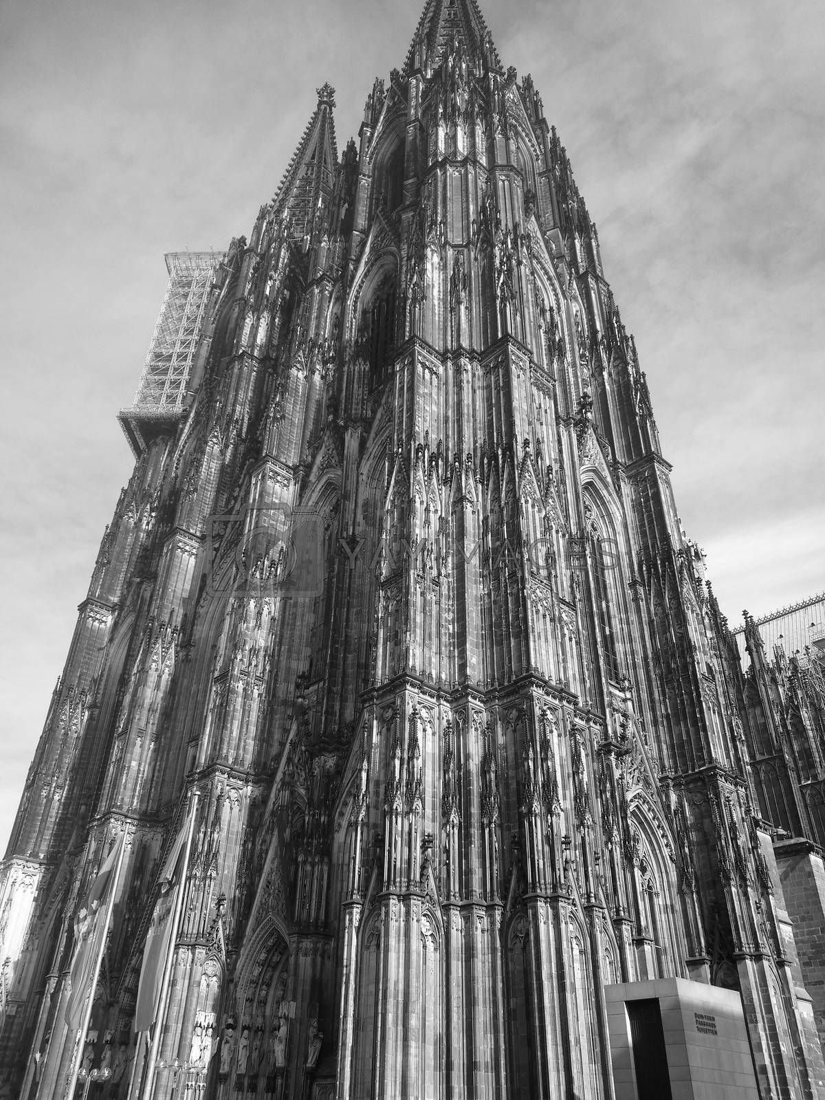 Royalty free image of The mighty Cologne Cathedral  by balage941