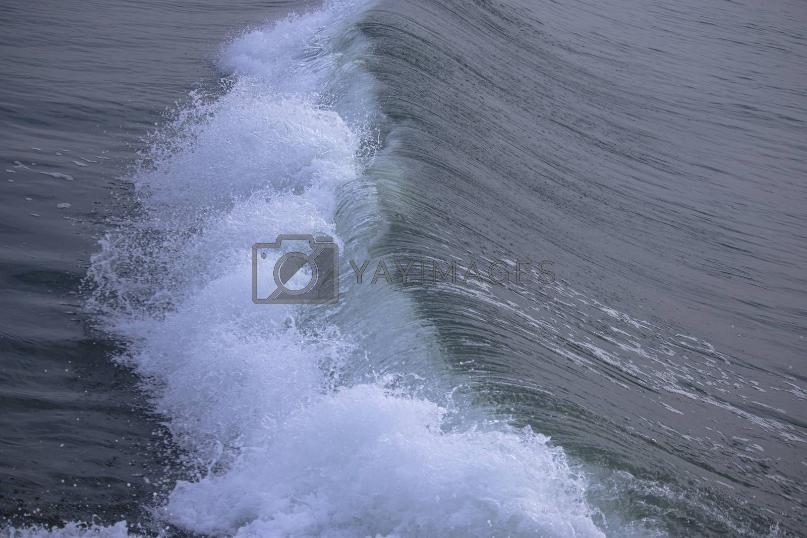 The pattern of the motion of the rising water wave in the sea at sunrise