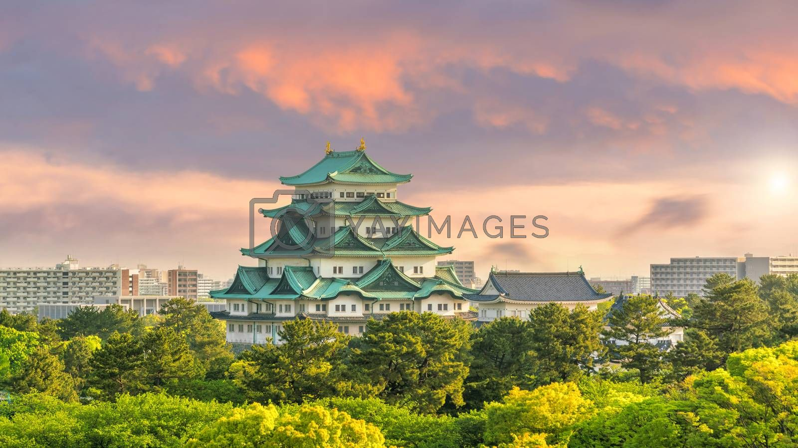 Royalty free image of Nagoya castle and city skyline in Japan  by f11photo
