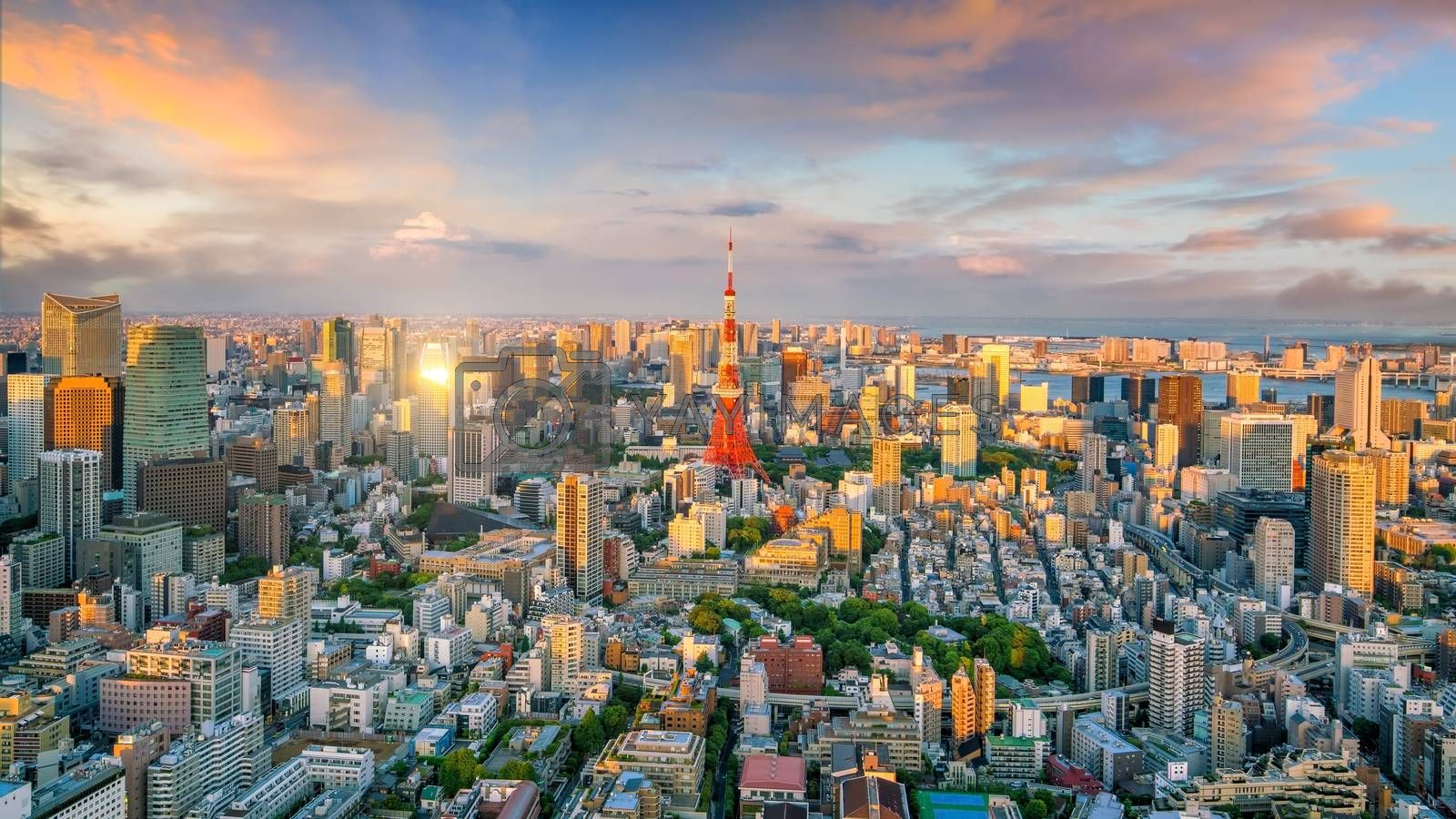 Royalty free image of Panorama view of Tokyo city skyline and Tokyo Tower building in  by f11photo