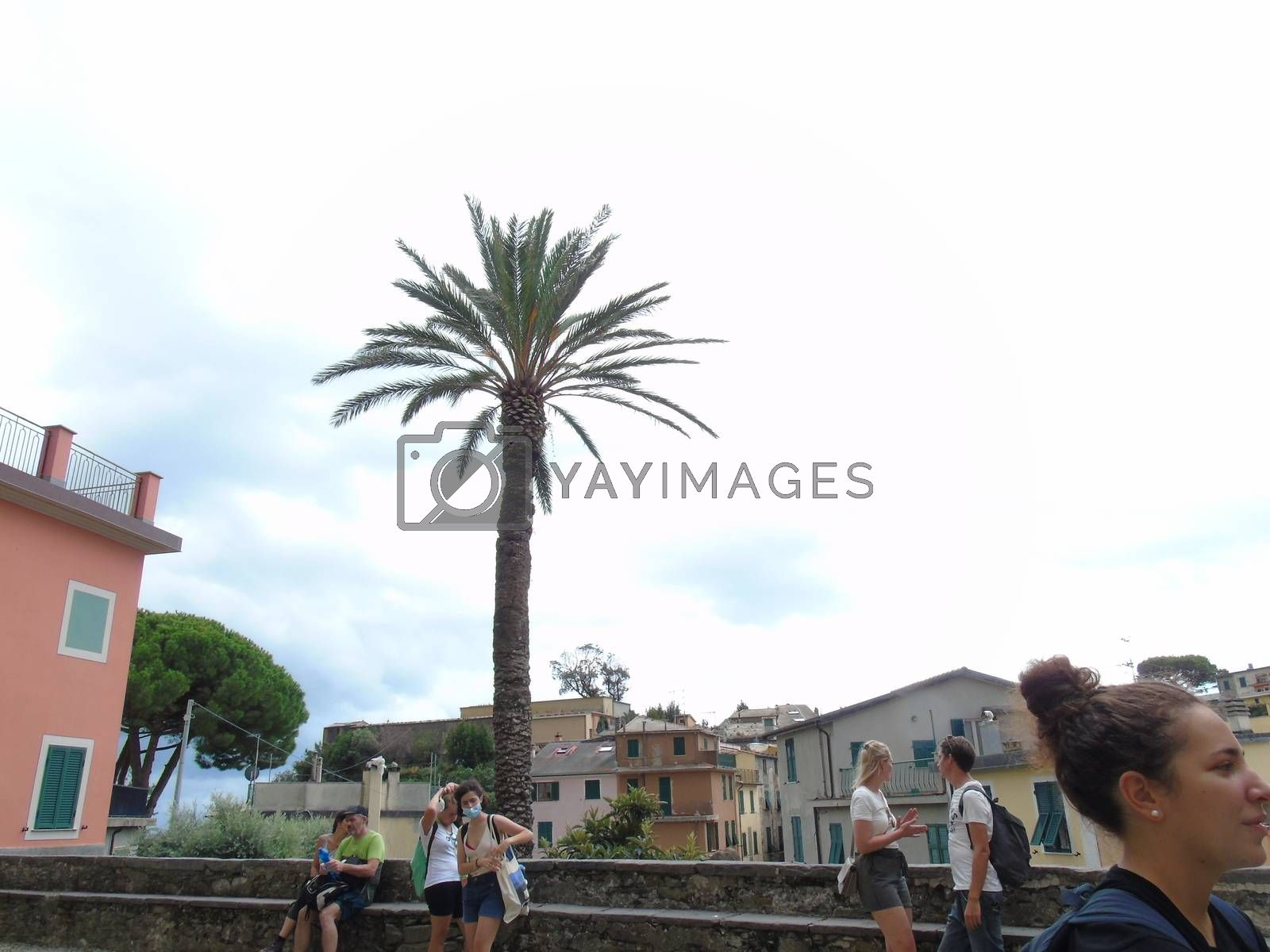 Royalty free image of Cinque Terre, Italy by yohananegusse