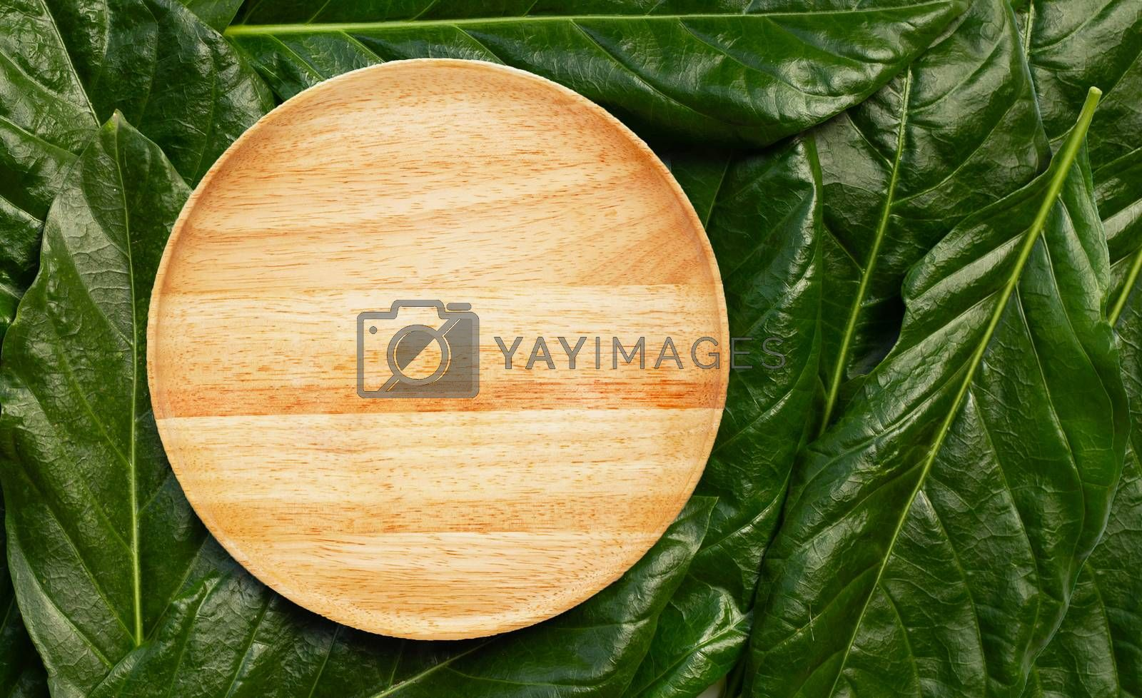Empty wooden plate  on Noni or Morinda Citrifolia leaves background. Top view