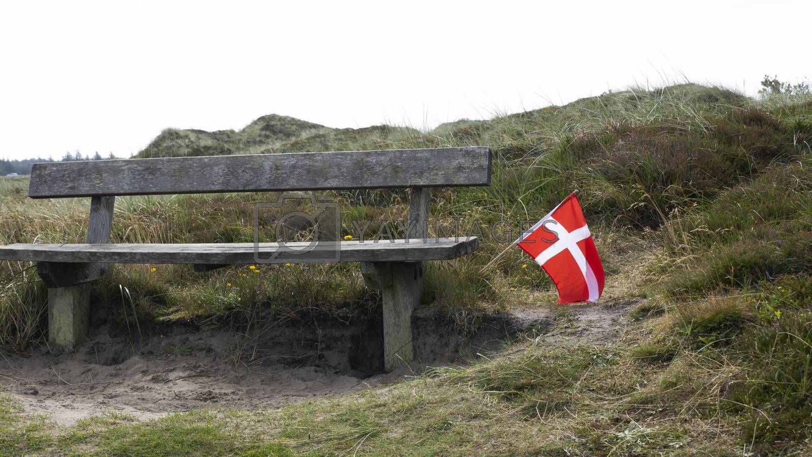 Royalty free image of A bench to rest in the national park in Denmark by Fr@nk