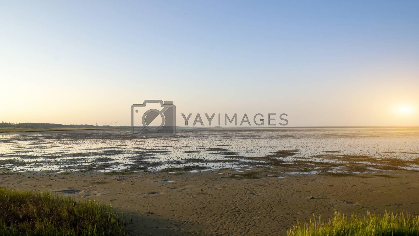 Royalty free image of Salt marsh by Fr@nk