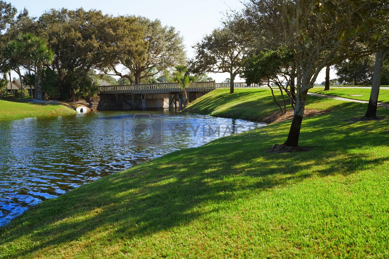 Natural parkland with lake. Florida, USA