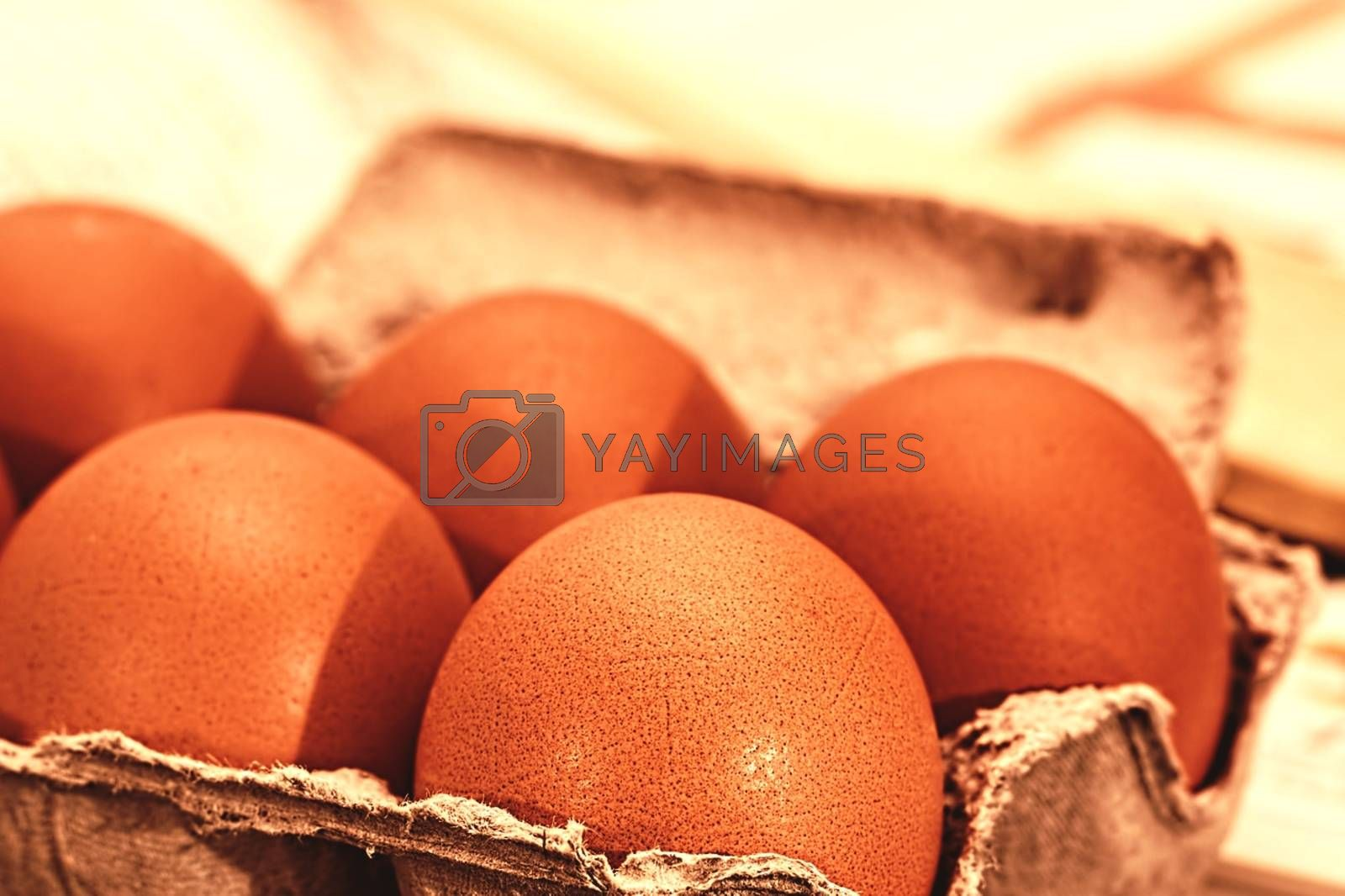 Royalty free image of Five eggs in the egg box  by balage941