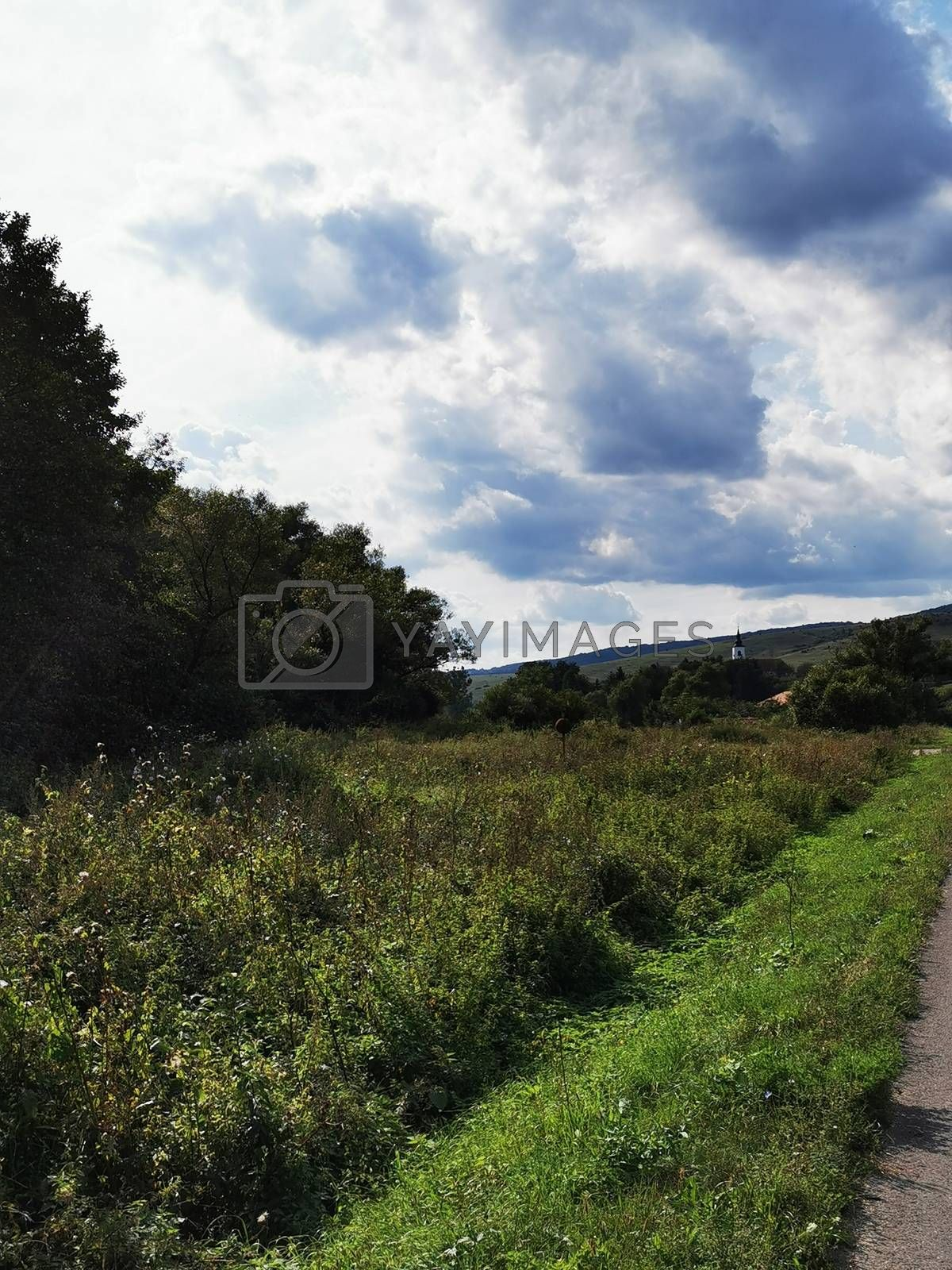 Royalty free image of A sign on the side of a hill by balage941