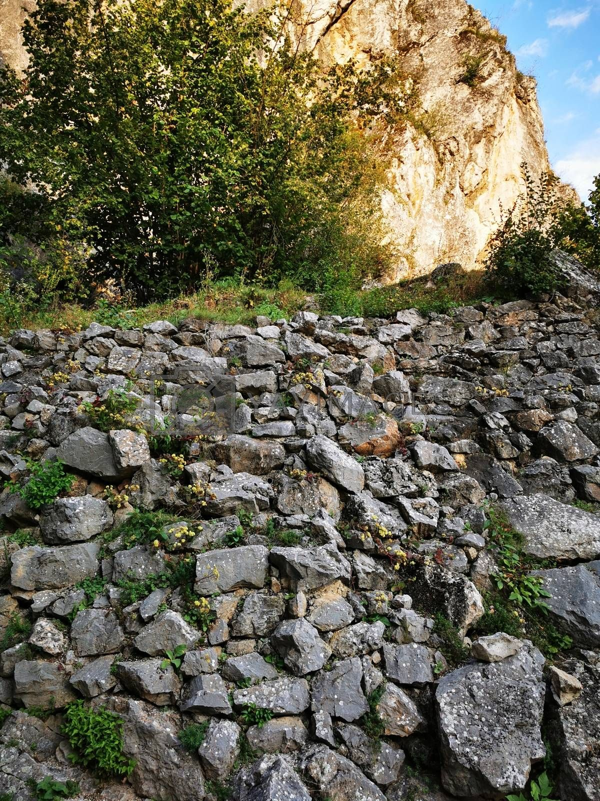Royalty free image of A stone wall in Aggtelek by balage941