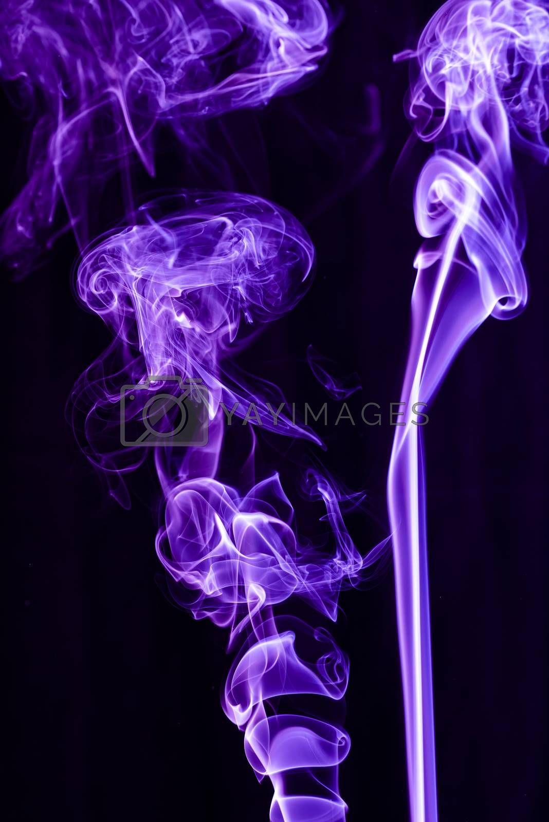 Violet abstract shaped smoke against black background. Abstract background. Selective focus