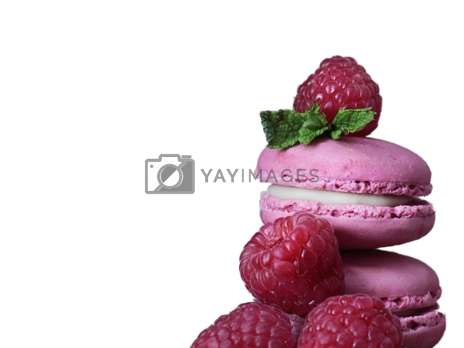 Royalty free image of Raspberry macaron with raspberry pieces on a white background by balage941