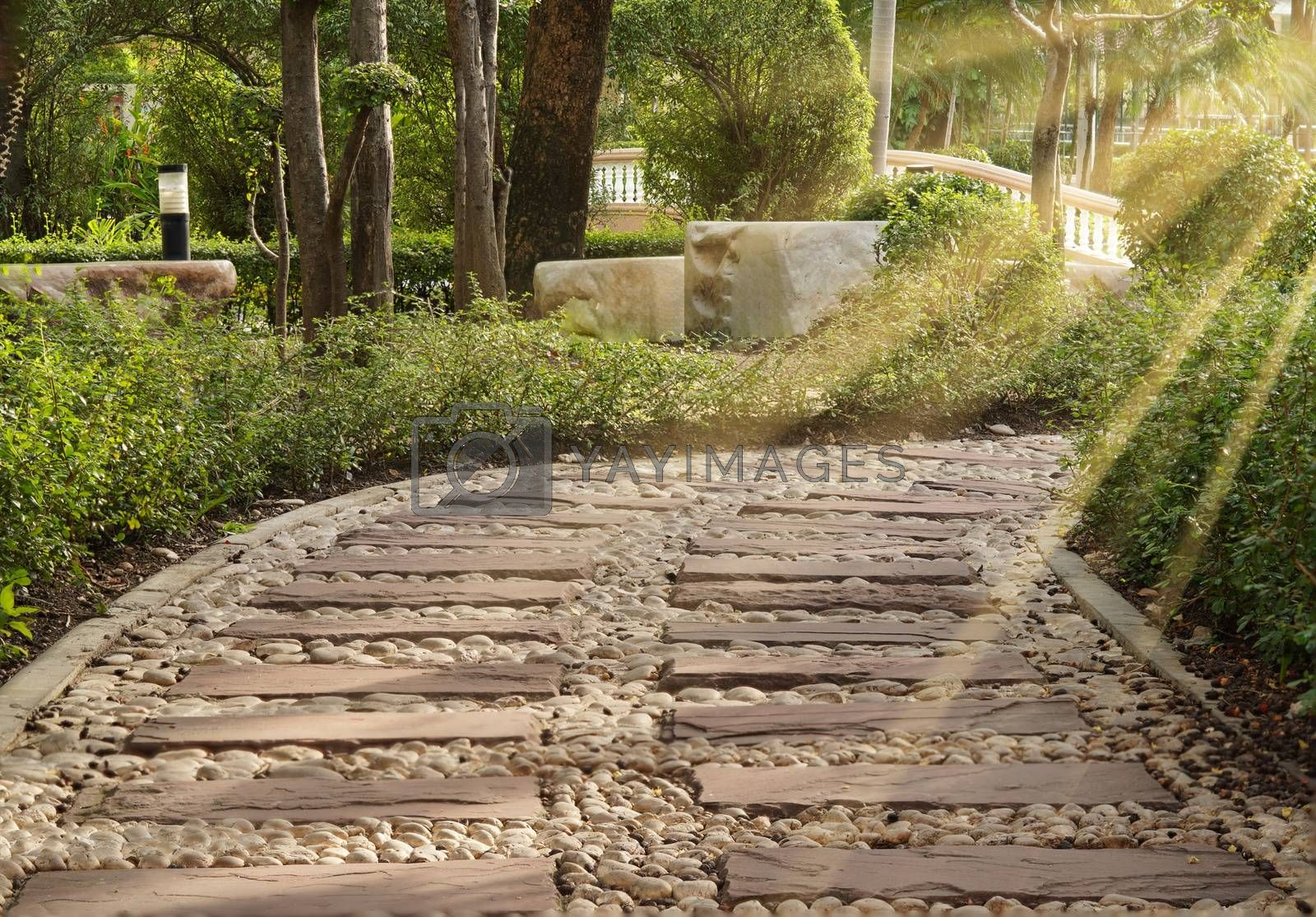The walking path paved with cobbles and wood floors, the morning sun shines.