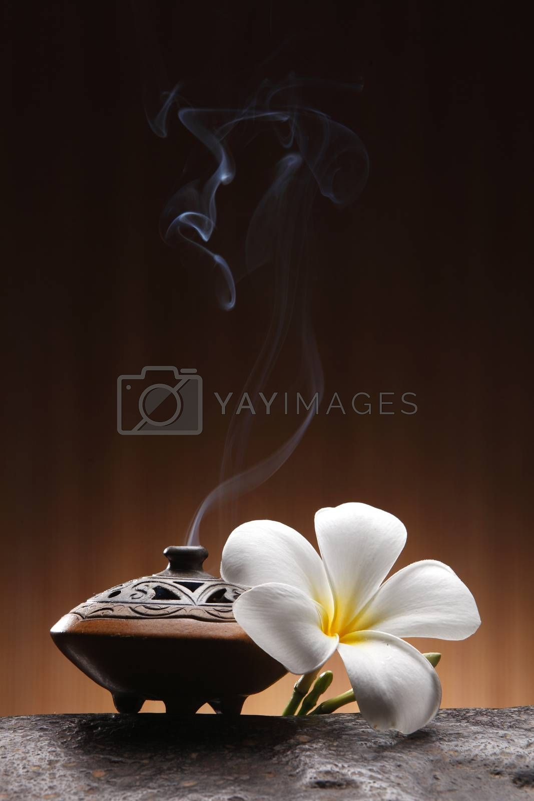 Smoking incense container with white frangipani