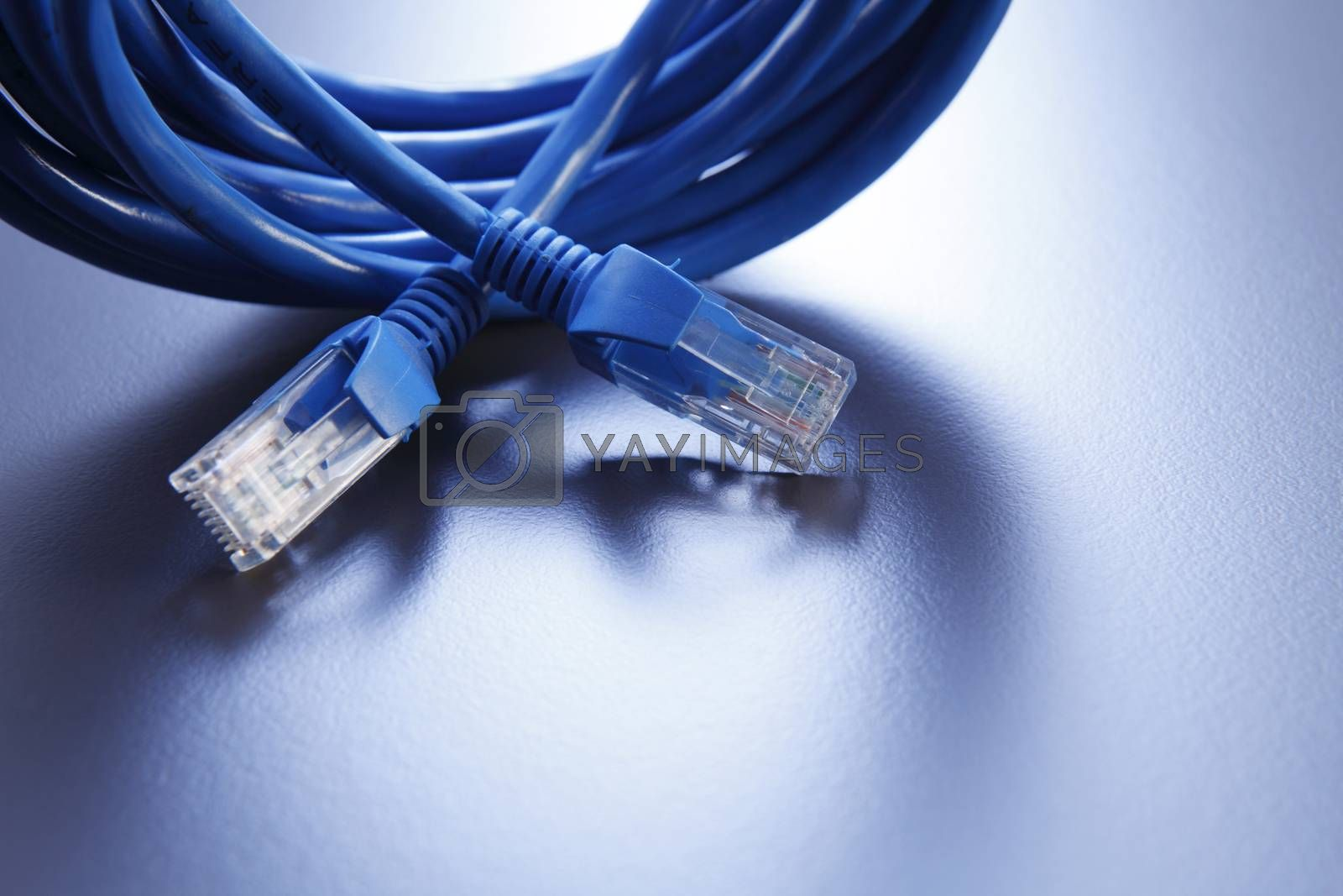 close up of the blue color network cable