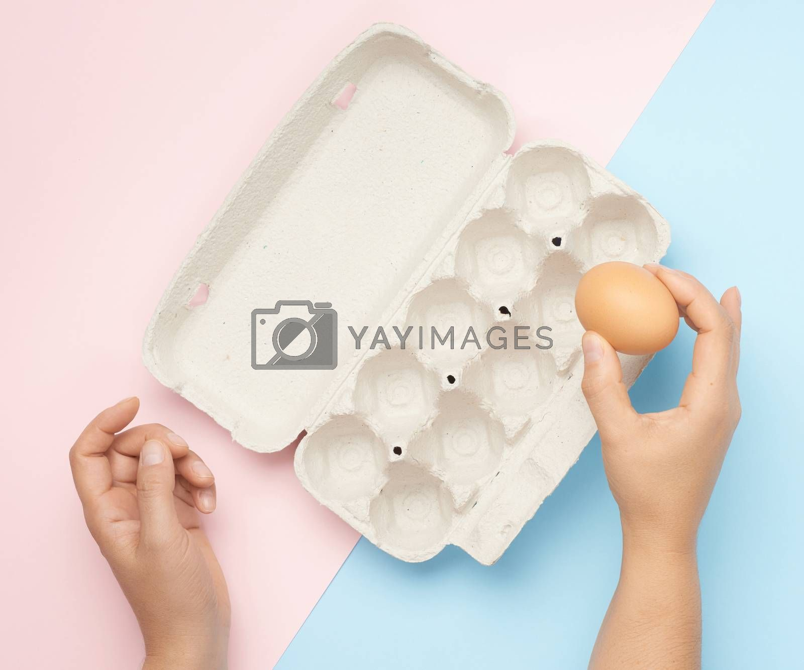 hand hold whole brown chicken egg and paper tray on a pink-blue background, top view