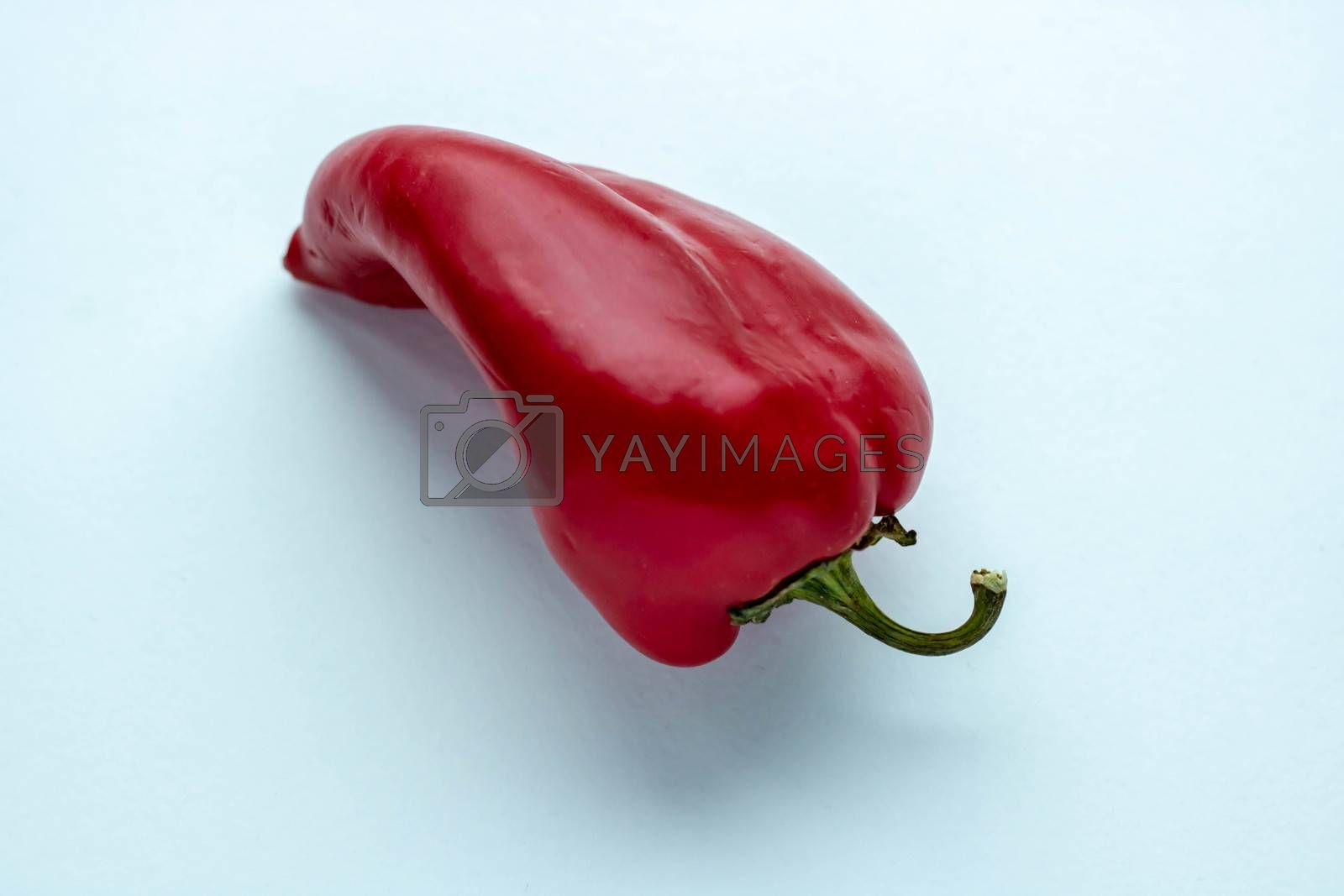 Red hot pepper on white background. Vibrant color