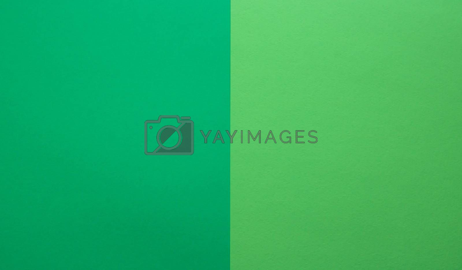 green and light green pastel paper color for the background
