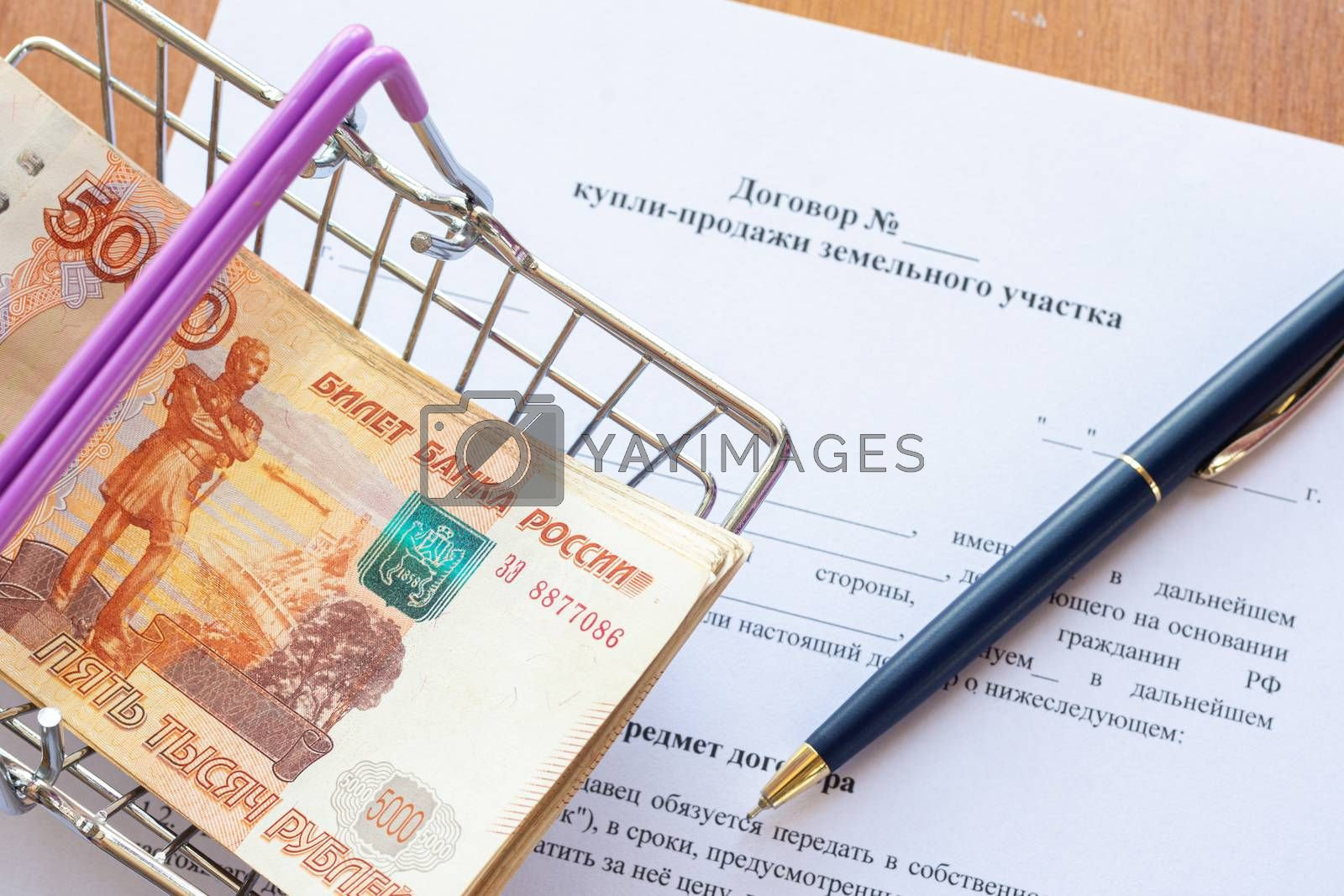 There is a bundle of money in a grocery basket and a ballpoint pen on the land purchase agreement