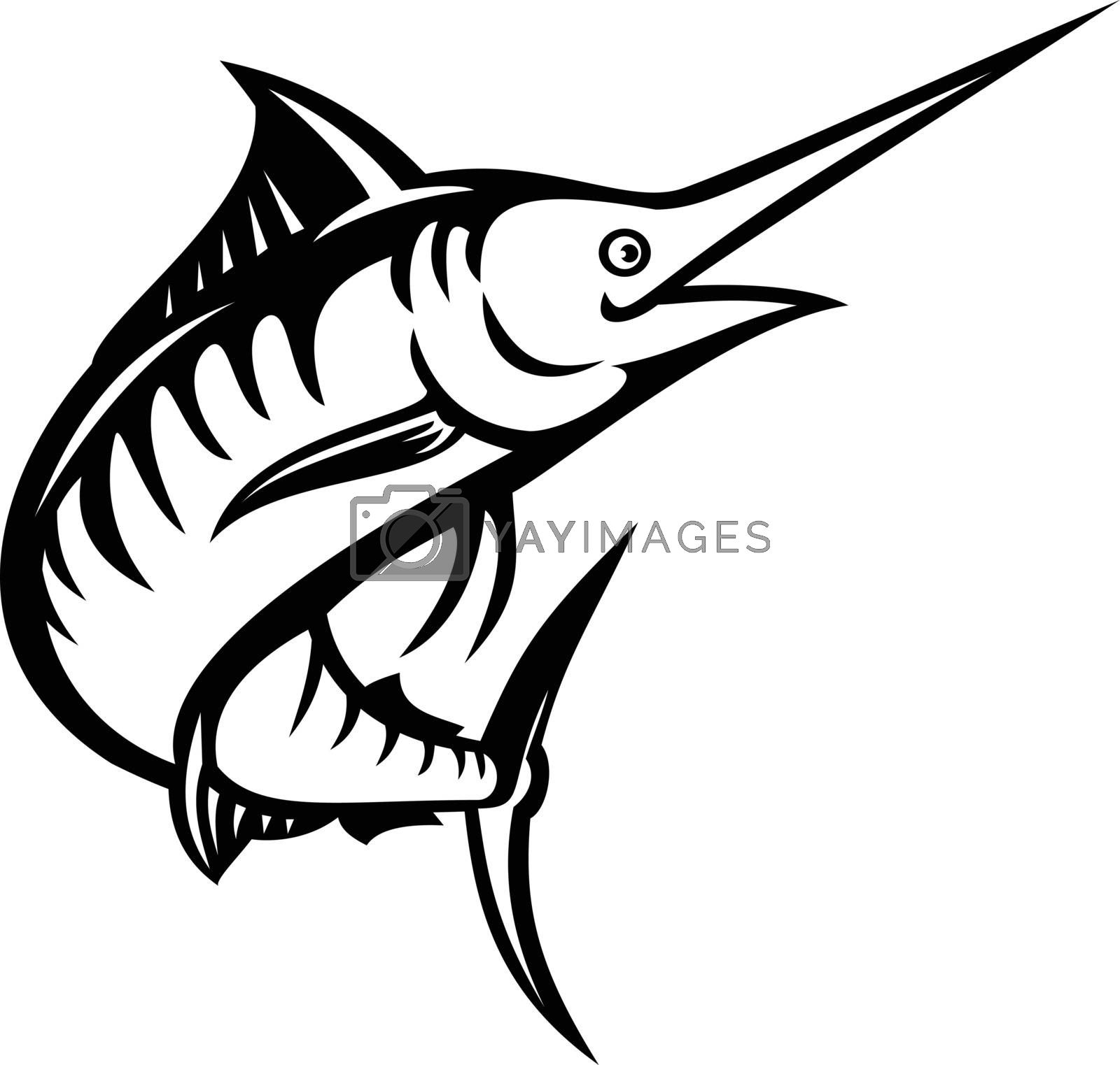 Retro style illustration of an Indo-Pacific blue marlin, a species of marlin or billfish swimming and jumping up done in black and white on isolated background in black and white stencil.