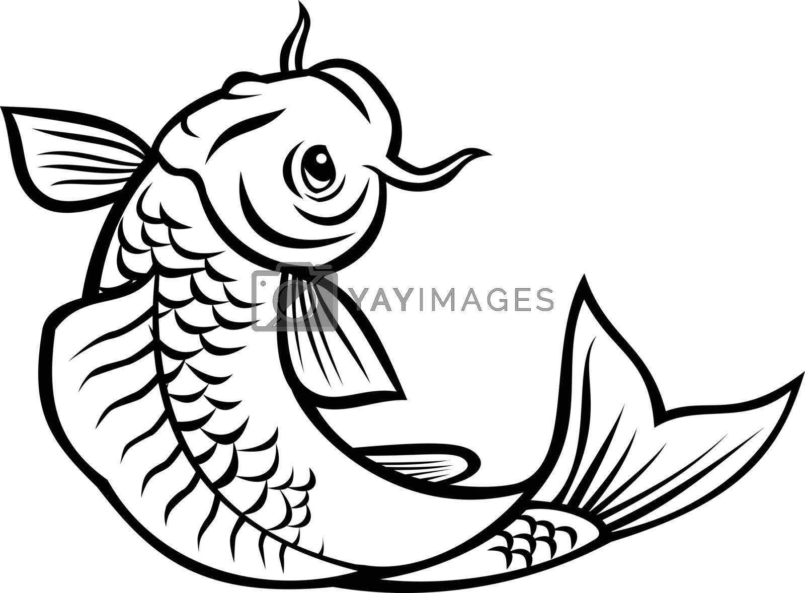 Cartoon style illustration of a jinli, Koi or nishikigoi fish, colored varieties of the Amur carp Cyprinus rubrofuscus, jumping up on isolated background done in black and white.