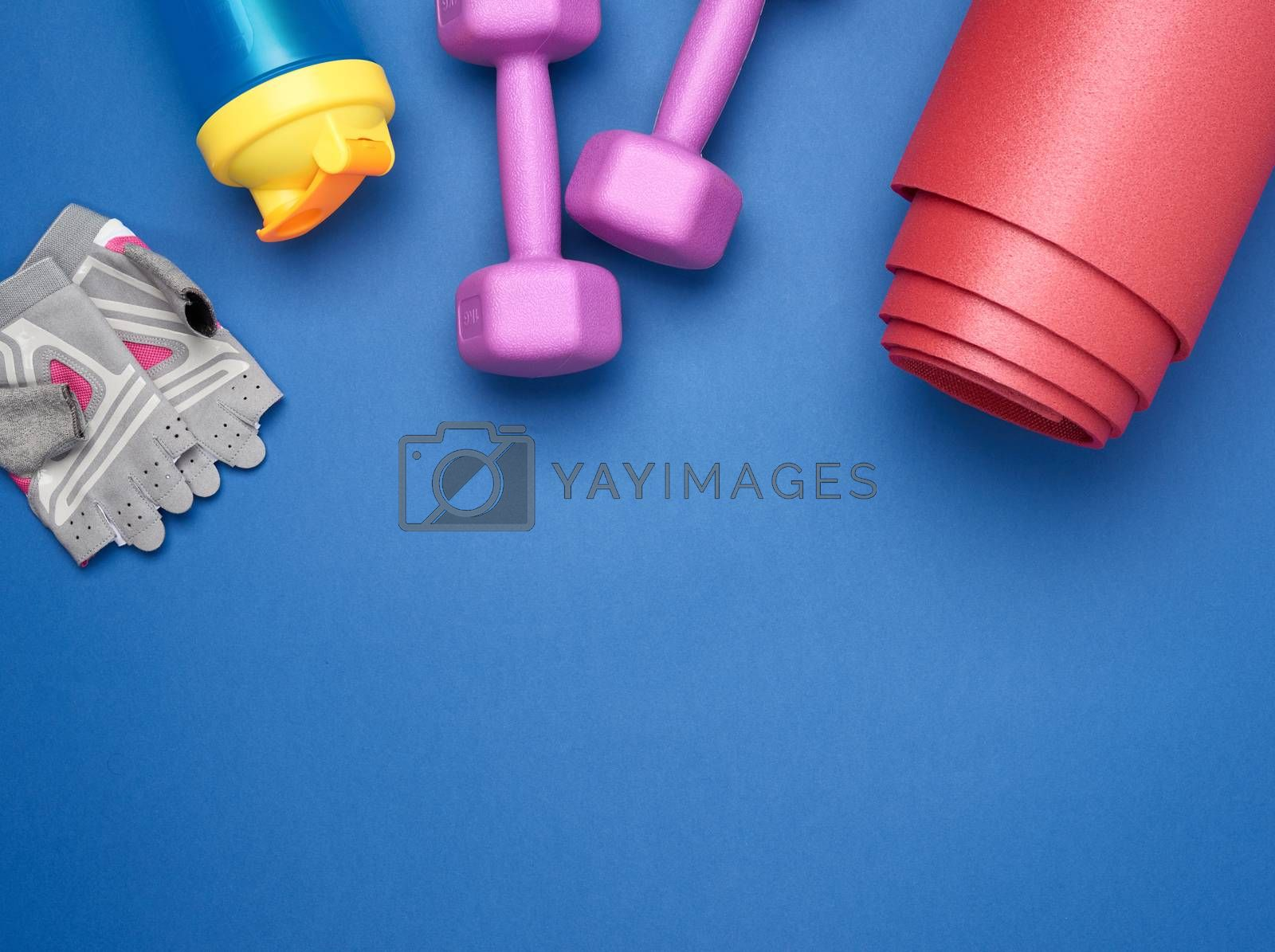 pair of dumbbells, sports gloves and red sports mat, top view, set