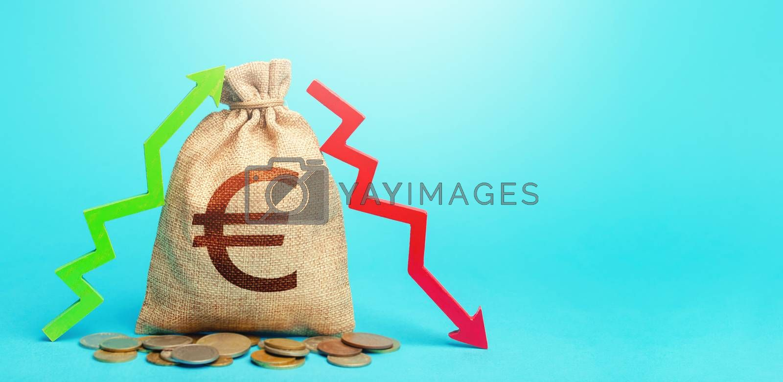 Euro money bag and two arrows of profit loss. Income expense concept. Debit and credit. Capital movement. Budget implementation. Deposits or lending in banks. Analysis financial flows. Trade balance.
