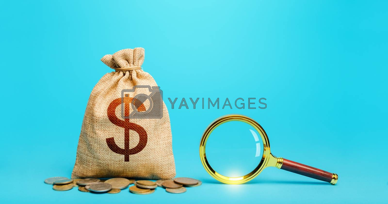 Dollar money bag and magnifying glass. Revising the budget to save money. Most favorable conditions for deposits, loans. Search for financing. Financial audit control. Origin of capital funds.