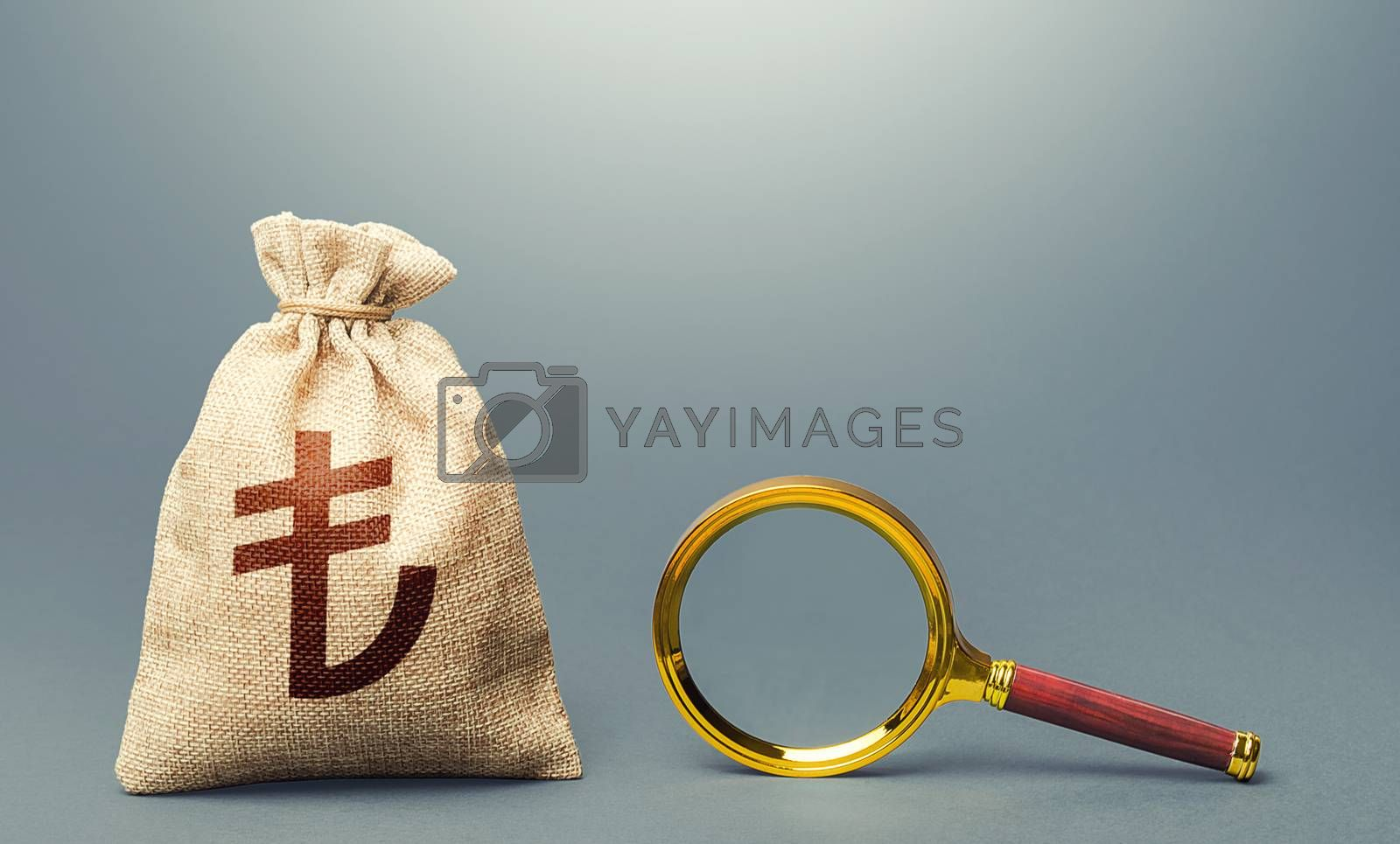 Turkish lira money bag and magnifying glass. Find high-paying job. Most favorable conditions for deposits, loans. Search for financing. Financial audit. Origin of capital and legality of funds.