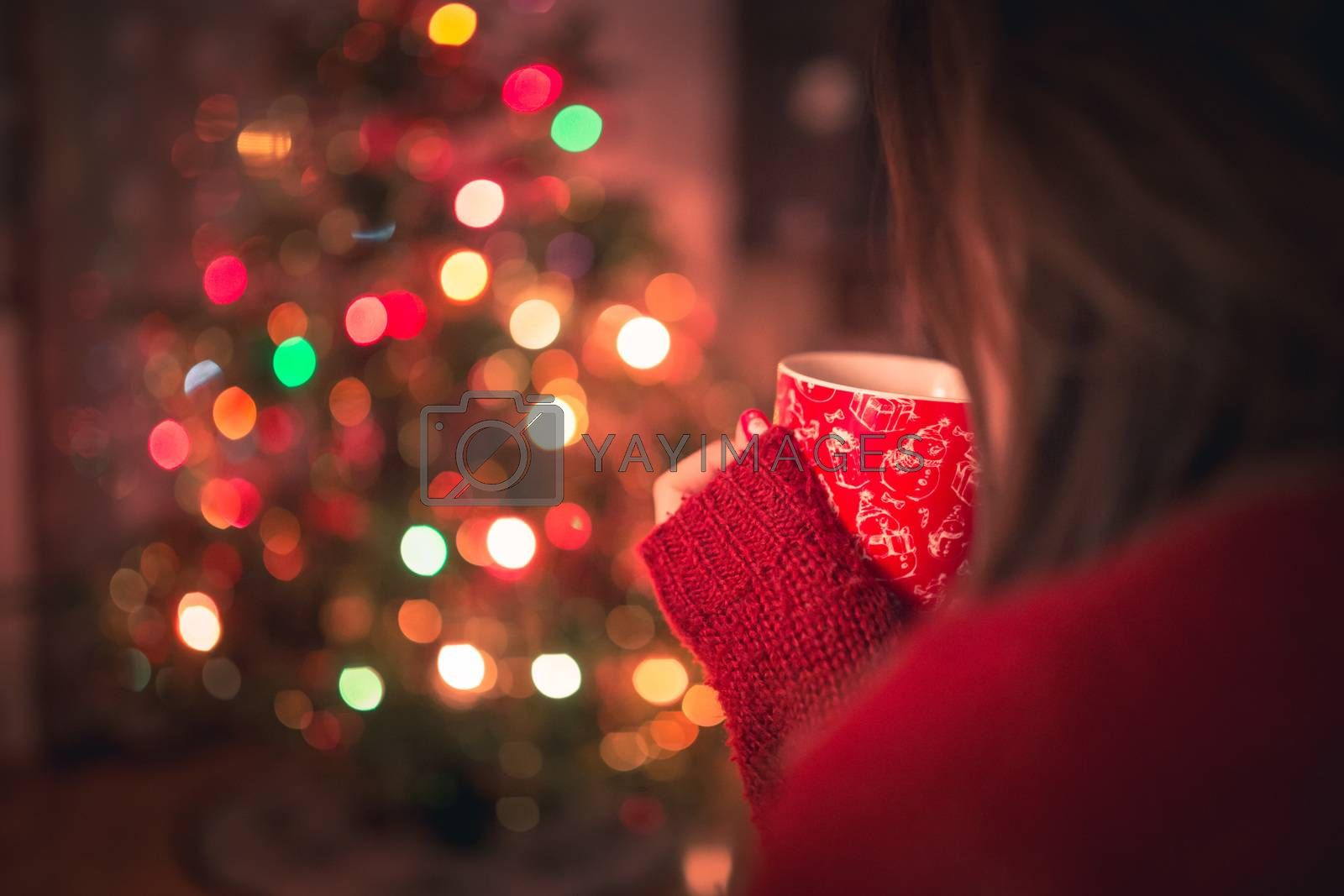 Royalty free image of Young woman with cup of hot chocolate or tea or coffee in front of Christmas tree. Relaxing and christmas concept. by petrsvoboda91