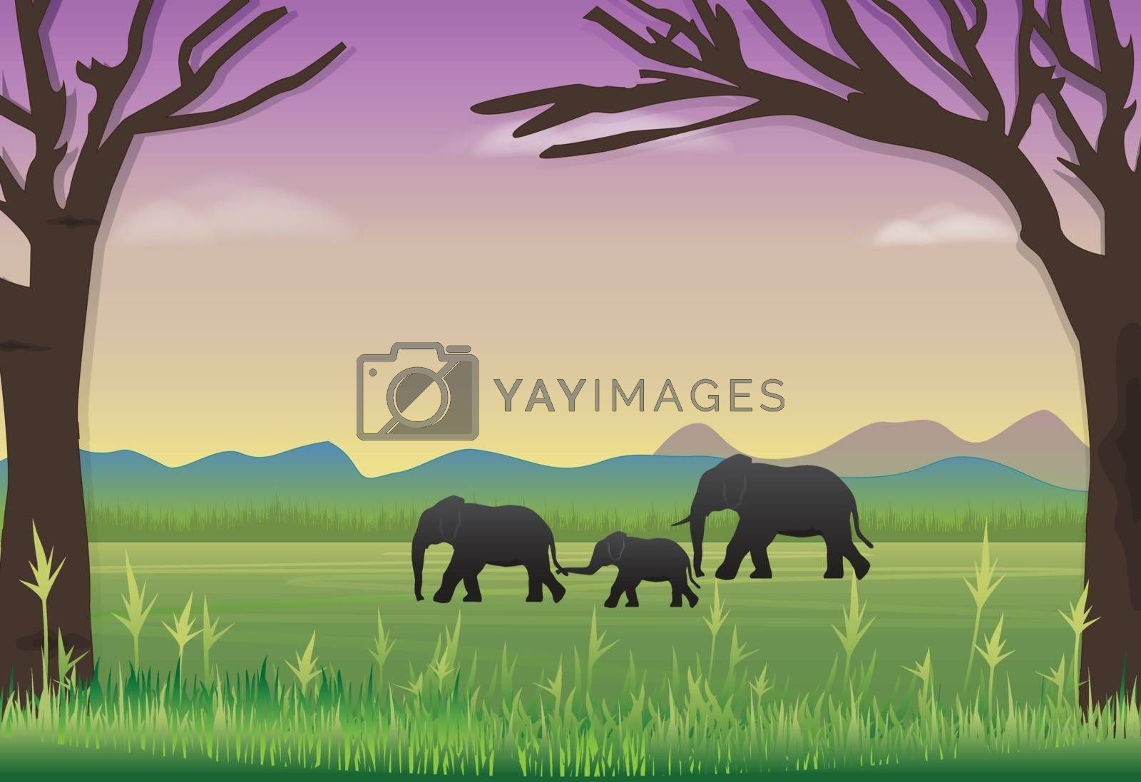 Elephants family in meadow. Nature landscape background by Kheat
