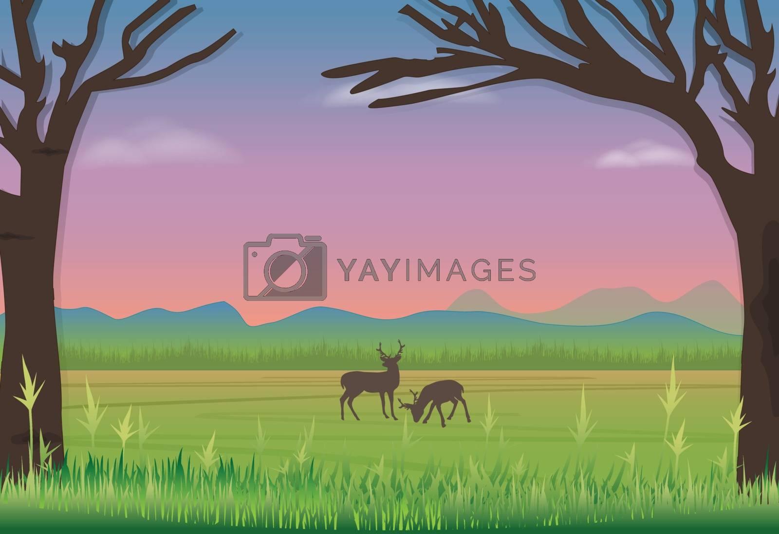Deer standing in meadow. Nature landscape background