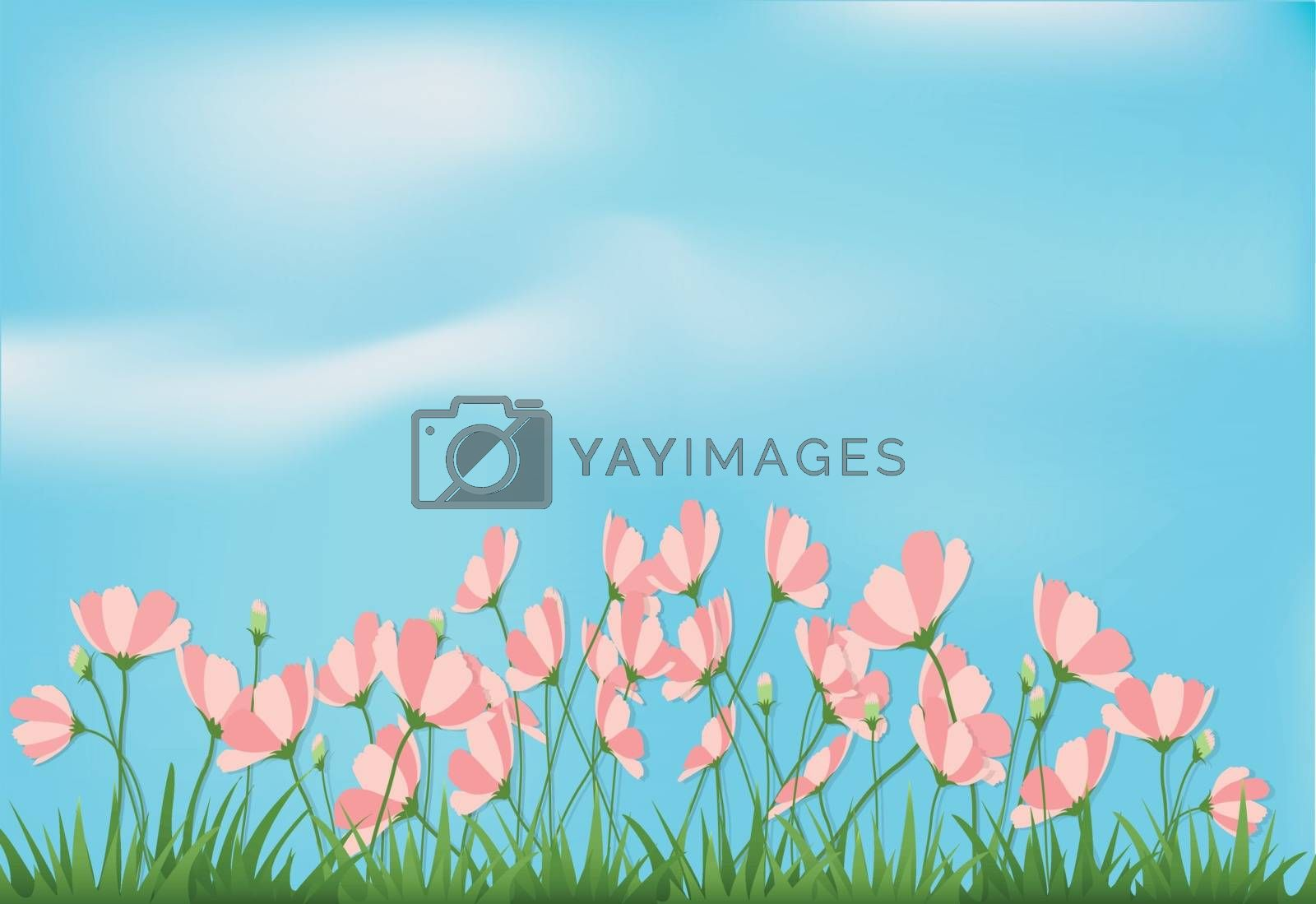 Paper art illustration of cosmos flowers and grass with blue sky spring season paper cut style background