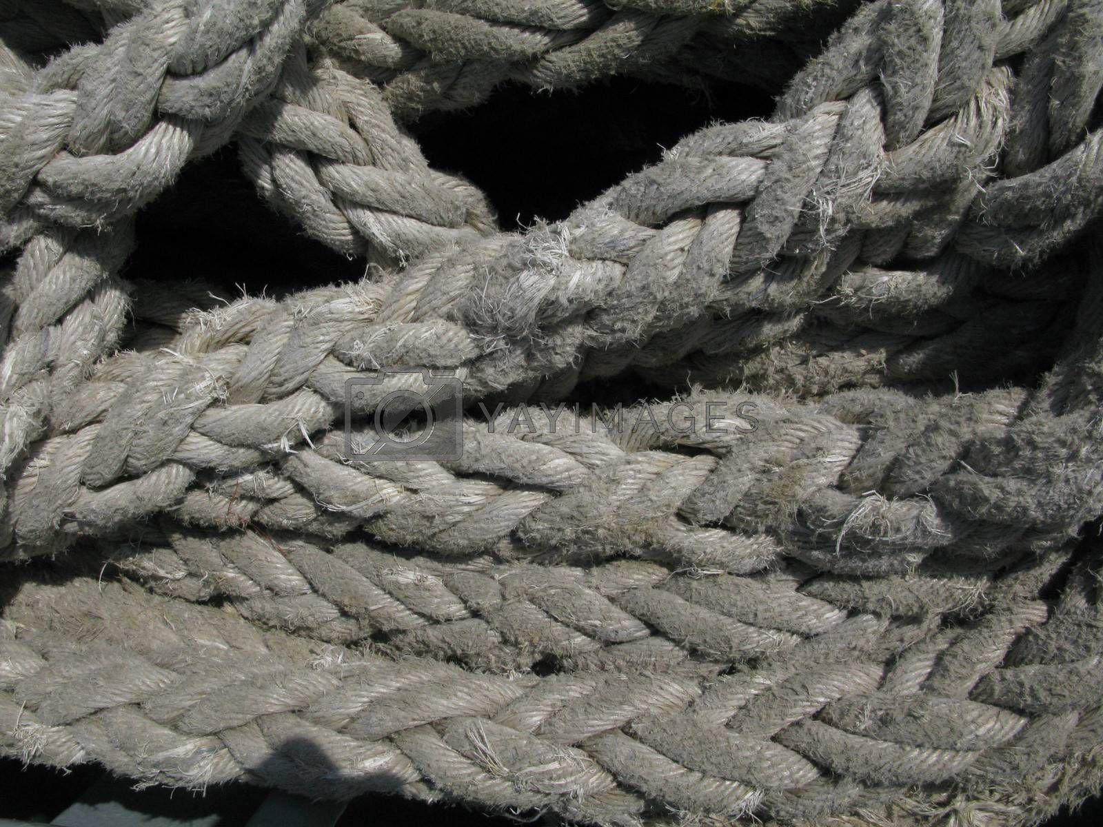 important equipment on every ship, a rope for securing a vessel