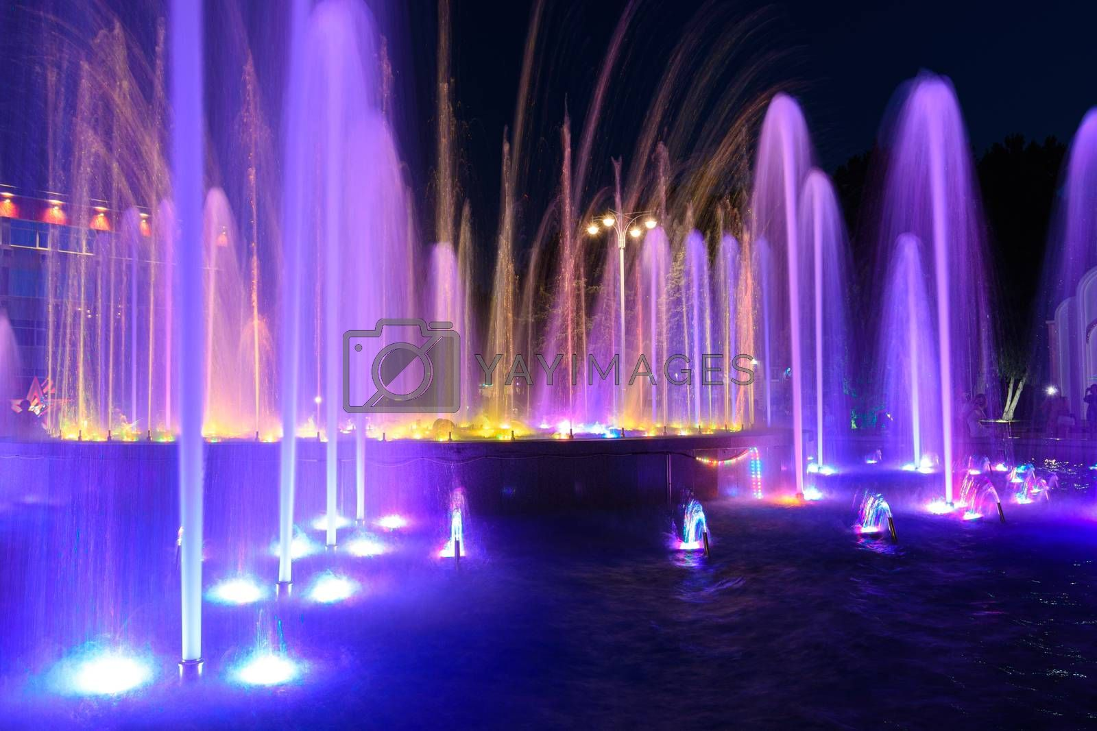 Jets of a night multi-colored illuminated fountain close-up