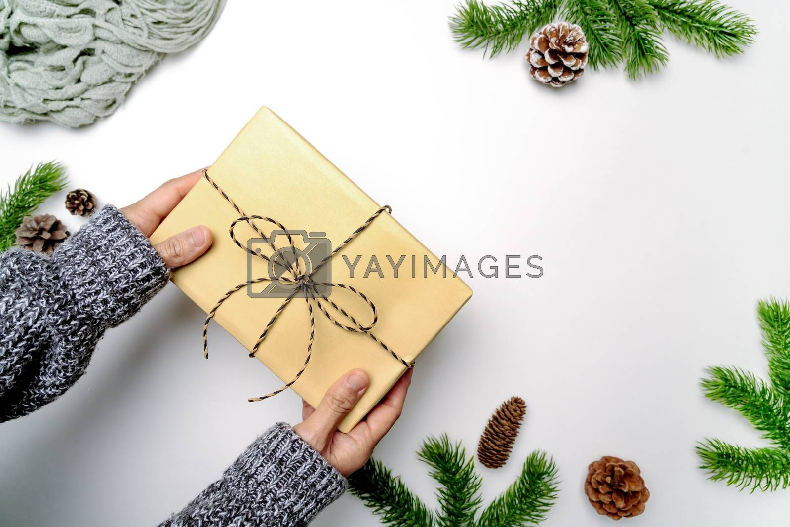 Christmas winter composition. Woman hand hold christmas gift box with pine cones, fir branches on white background. Flat lay, top view, copy space