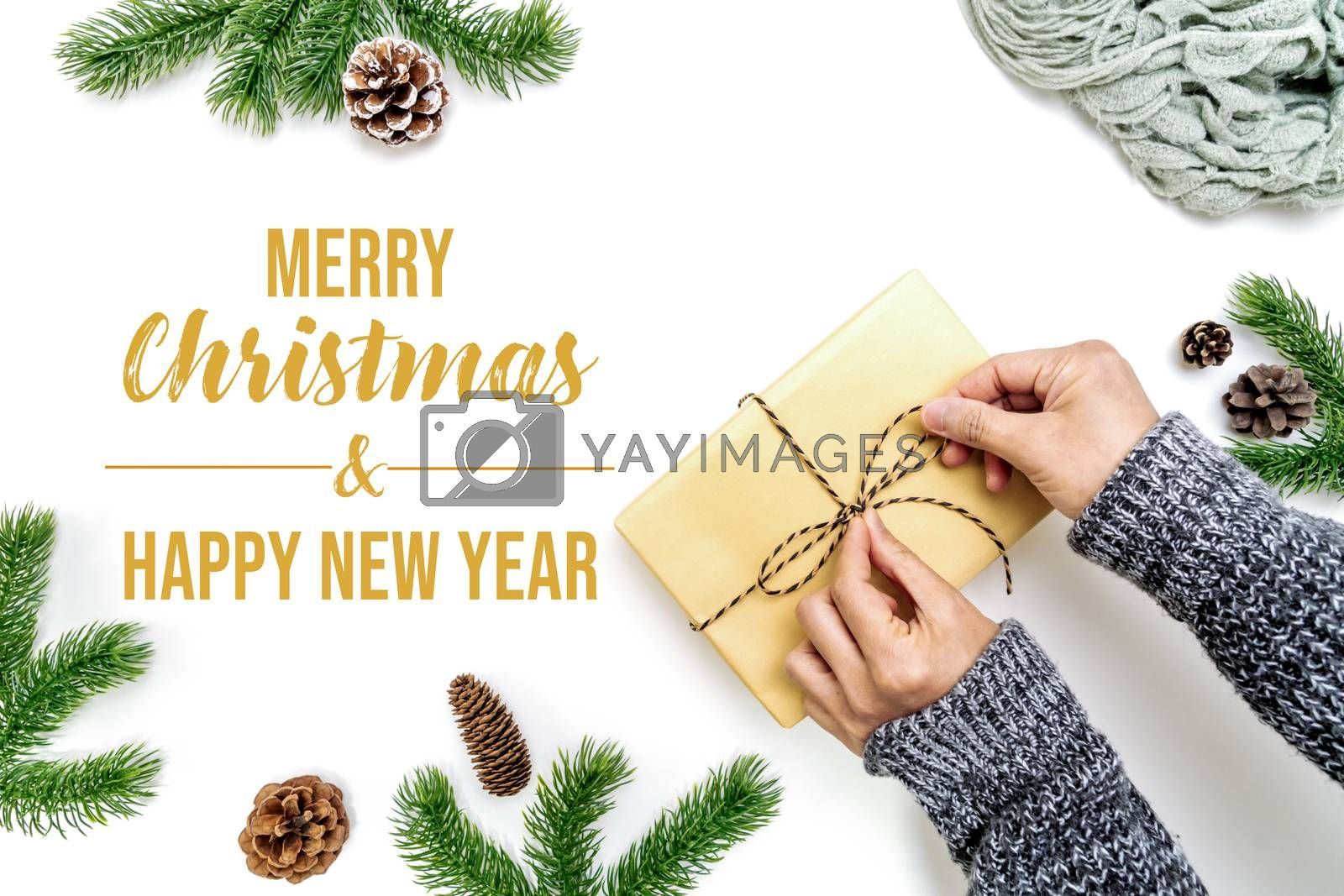 Christmas winter composition. Woman hands wrapping Christmas gifts box with pine cones, fir branches on white background. Flat lay, top view, copy space