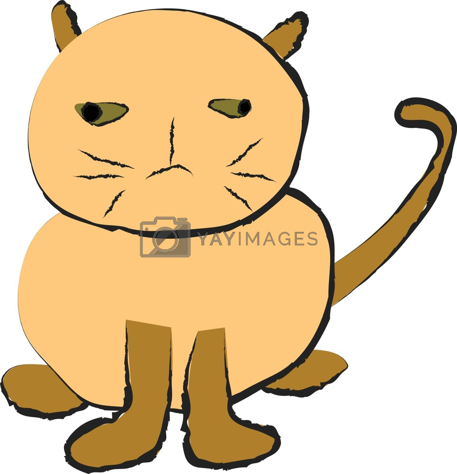 Funny fat cat on white background, vector drawing image