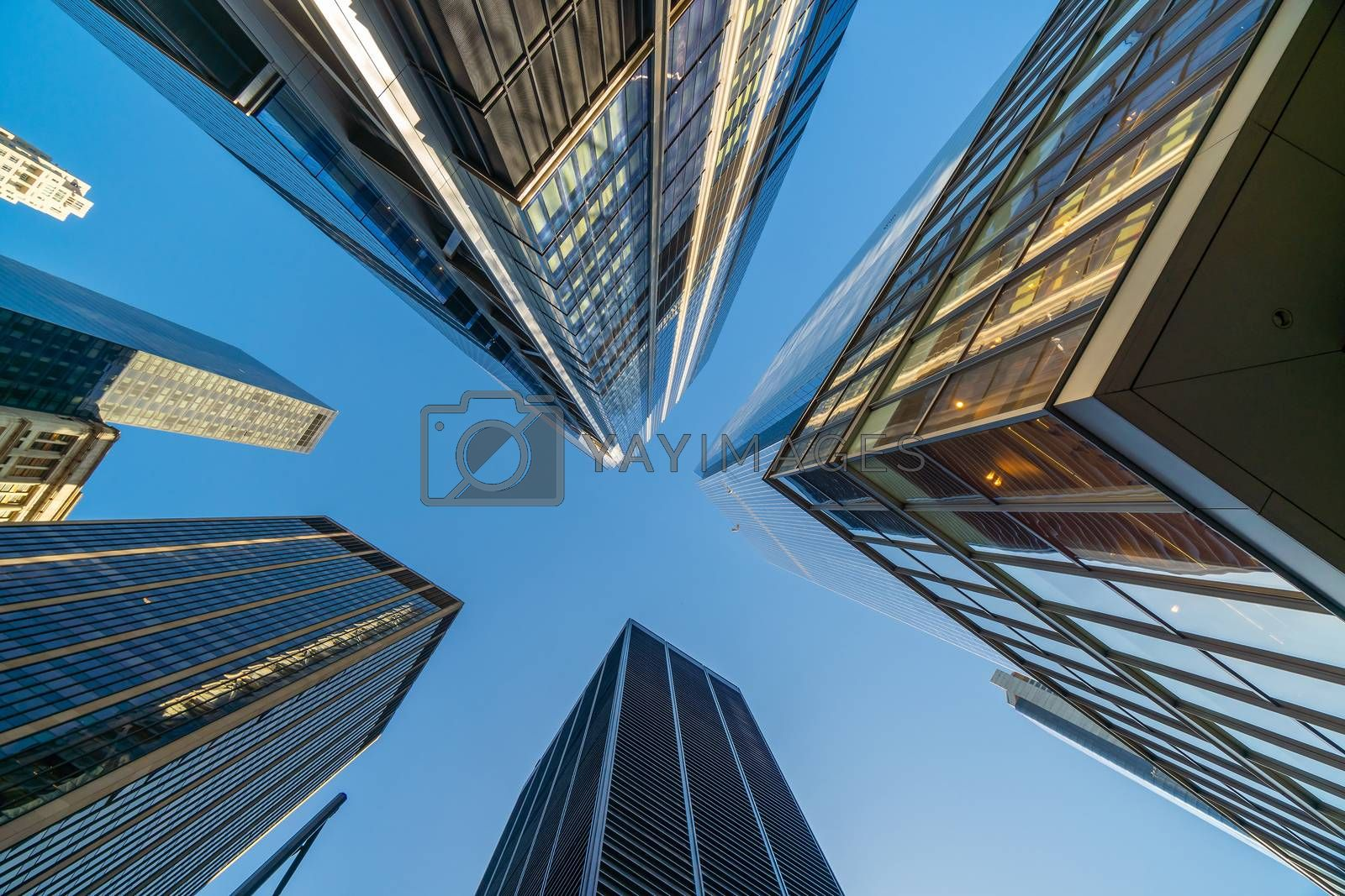Looking up at business buildings in downtown New York City, USA
