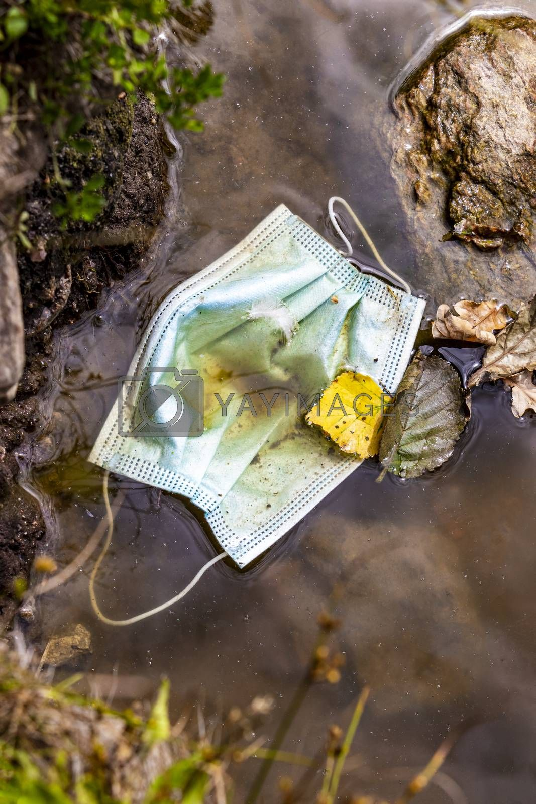 Surgical masks in the nature. Hanging in a lake. Corona virus pollution. Leherheide, Bremerhaven.