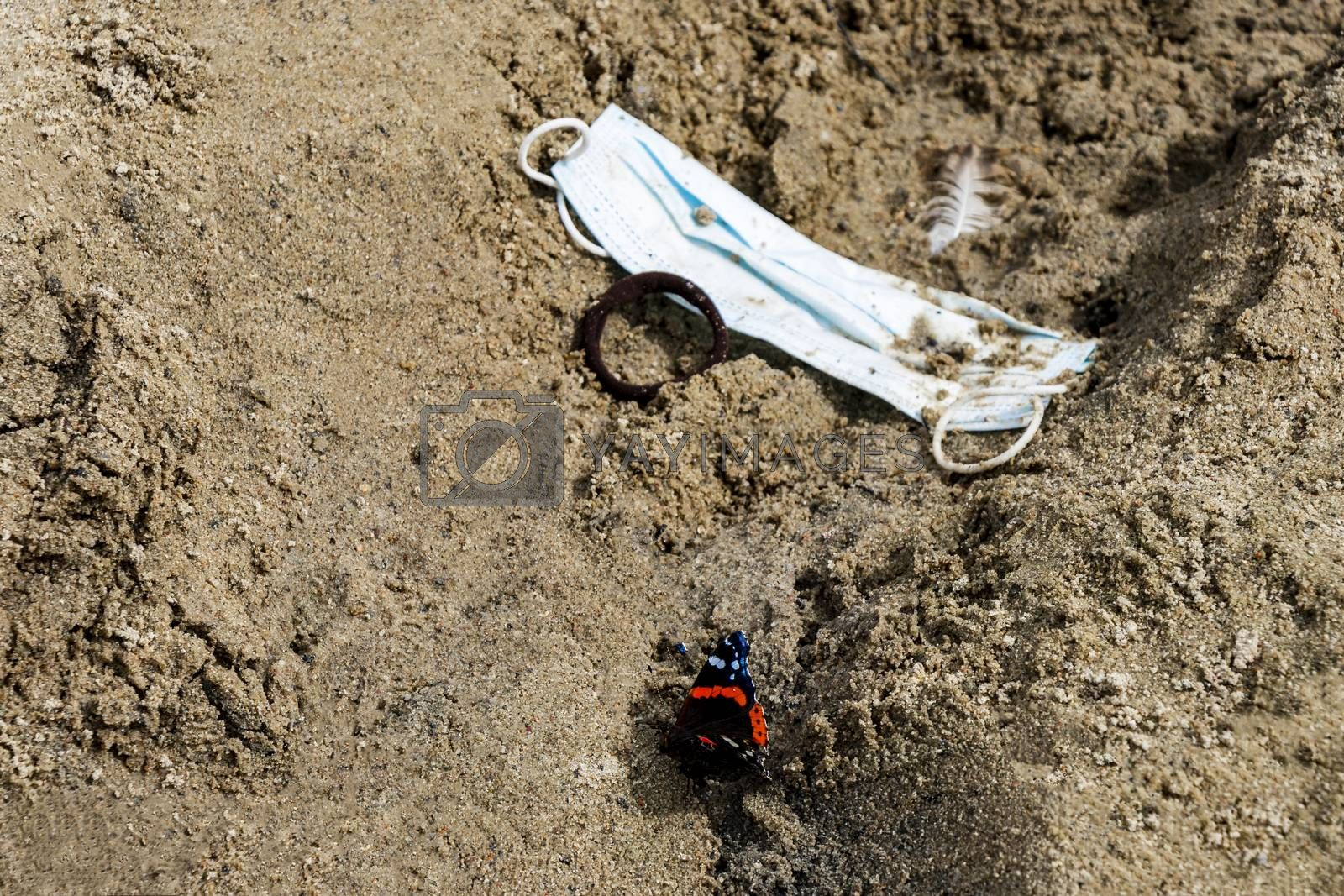 Dirty trash surgical masks on beach sand with beautiful butterfly. Corona virus pollution.