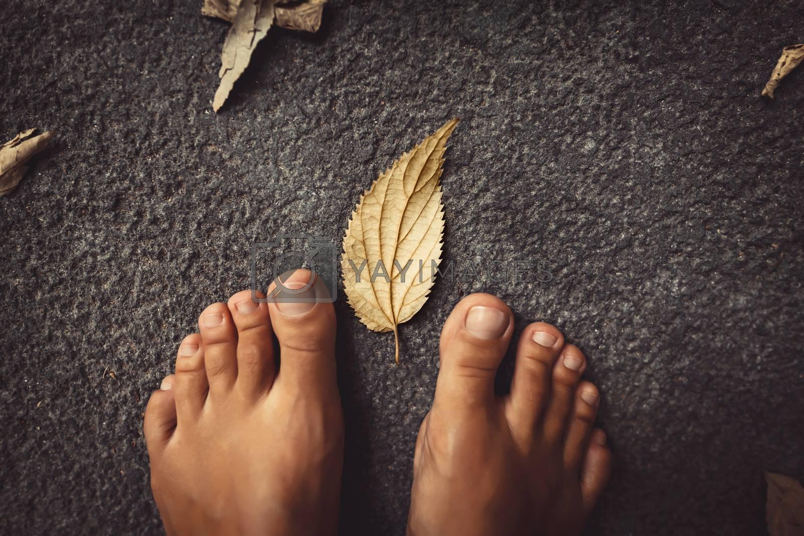 Fall Season Concept by Anna_Omelchenko