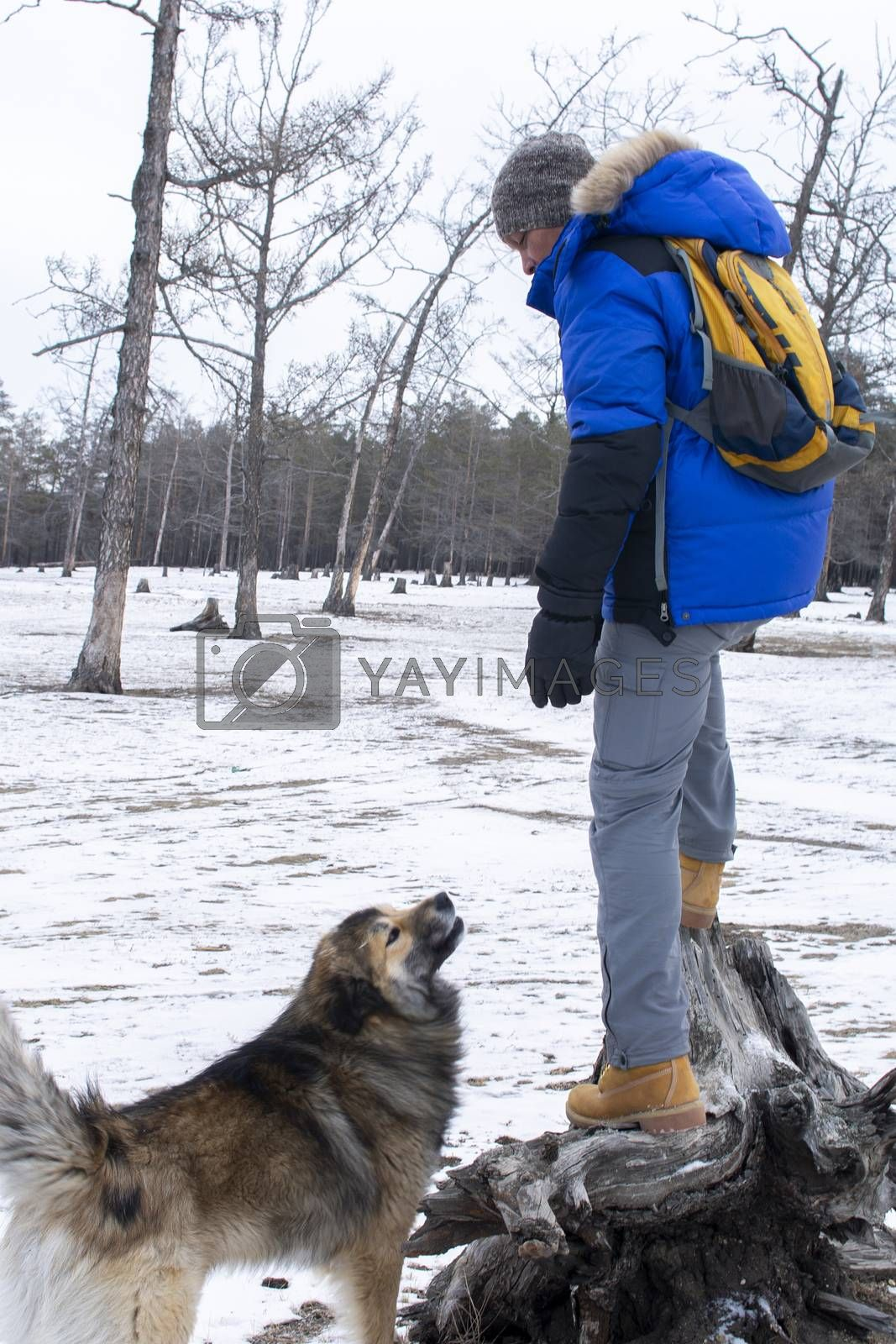 Man playing with dog in forest and snow on ground