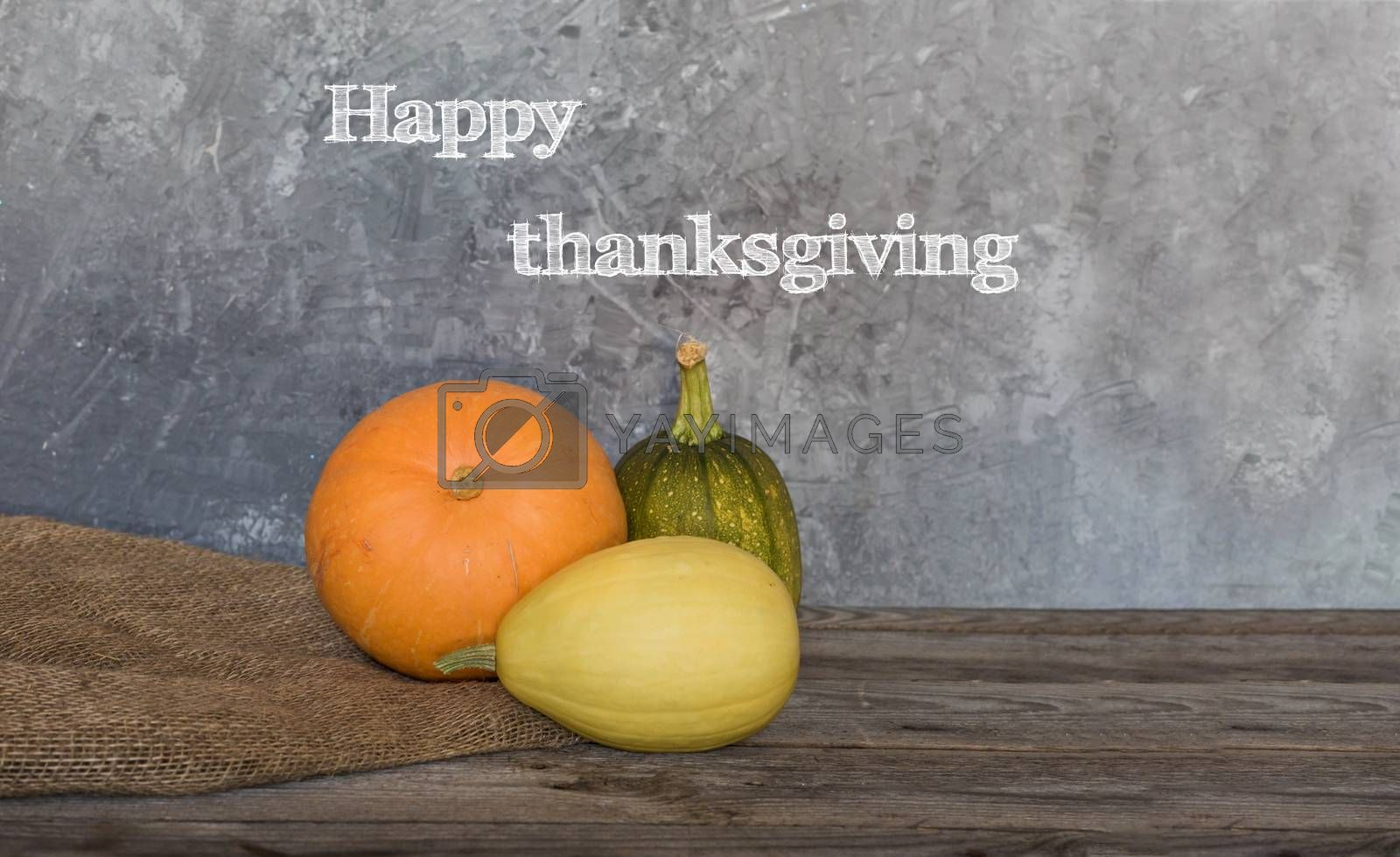 Happy Thanksgiving greeting text with colorful pumpkins over concrete background.