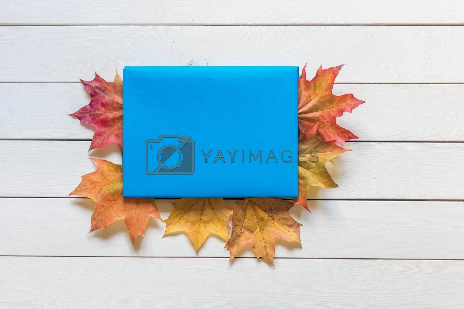 .The book with a bookmark of fallen leaves on a wooden background.